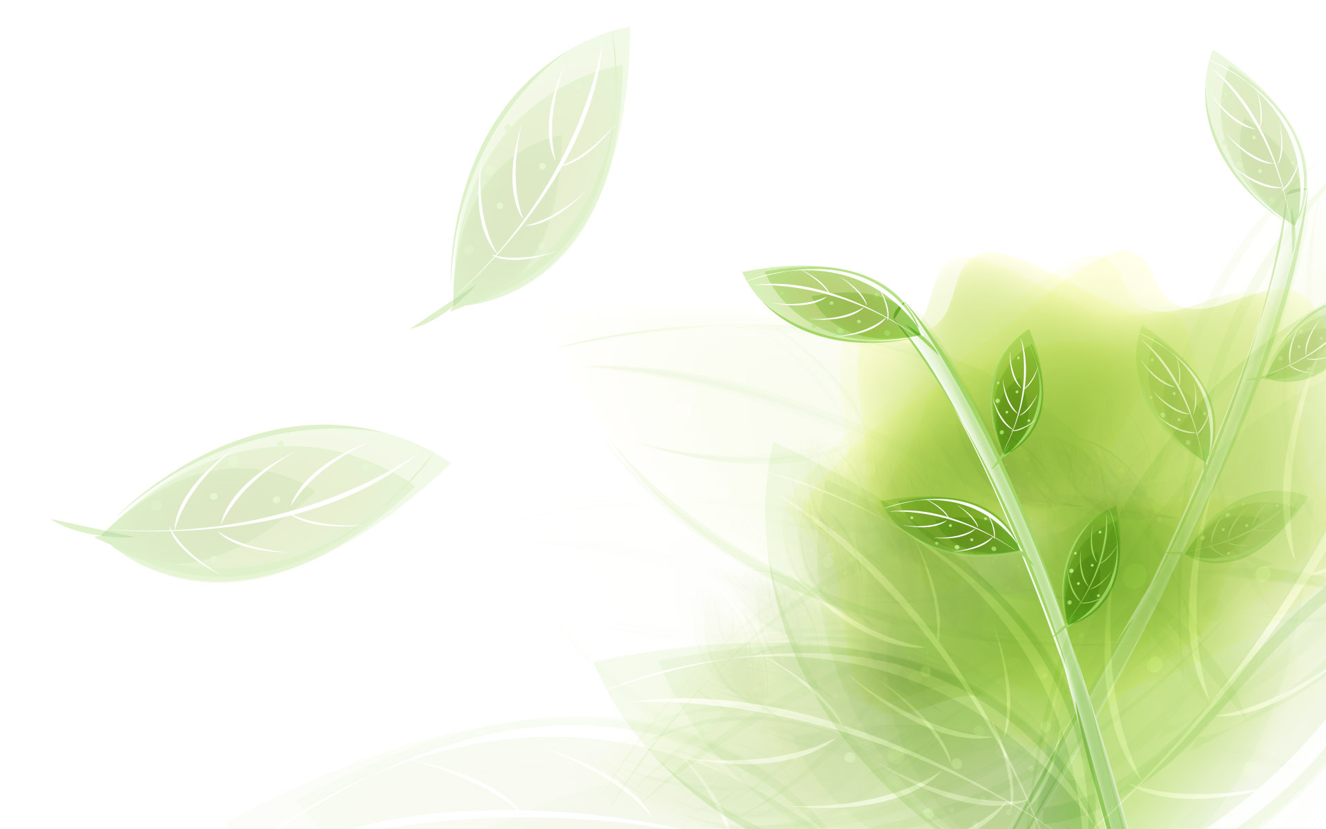 Background color 18293