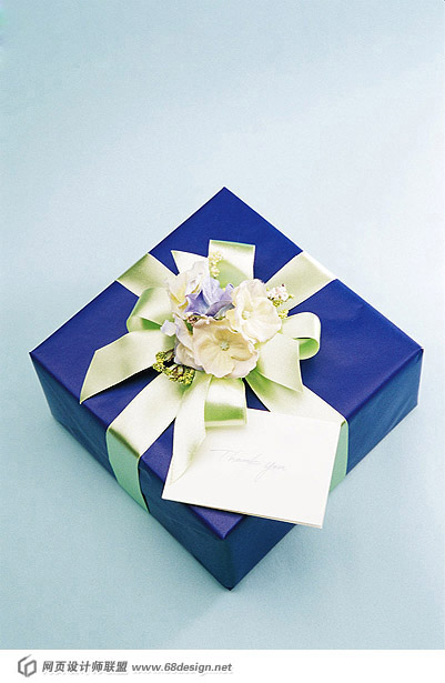 Fashion gift packaging material 13580