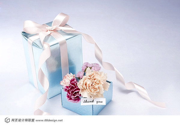 Fashion gift packaging material 15386