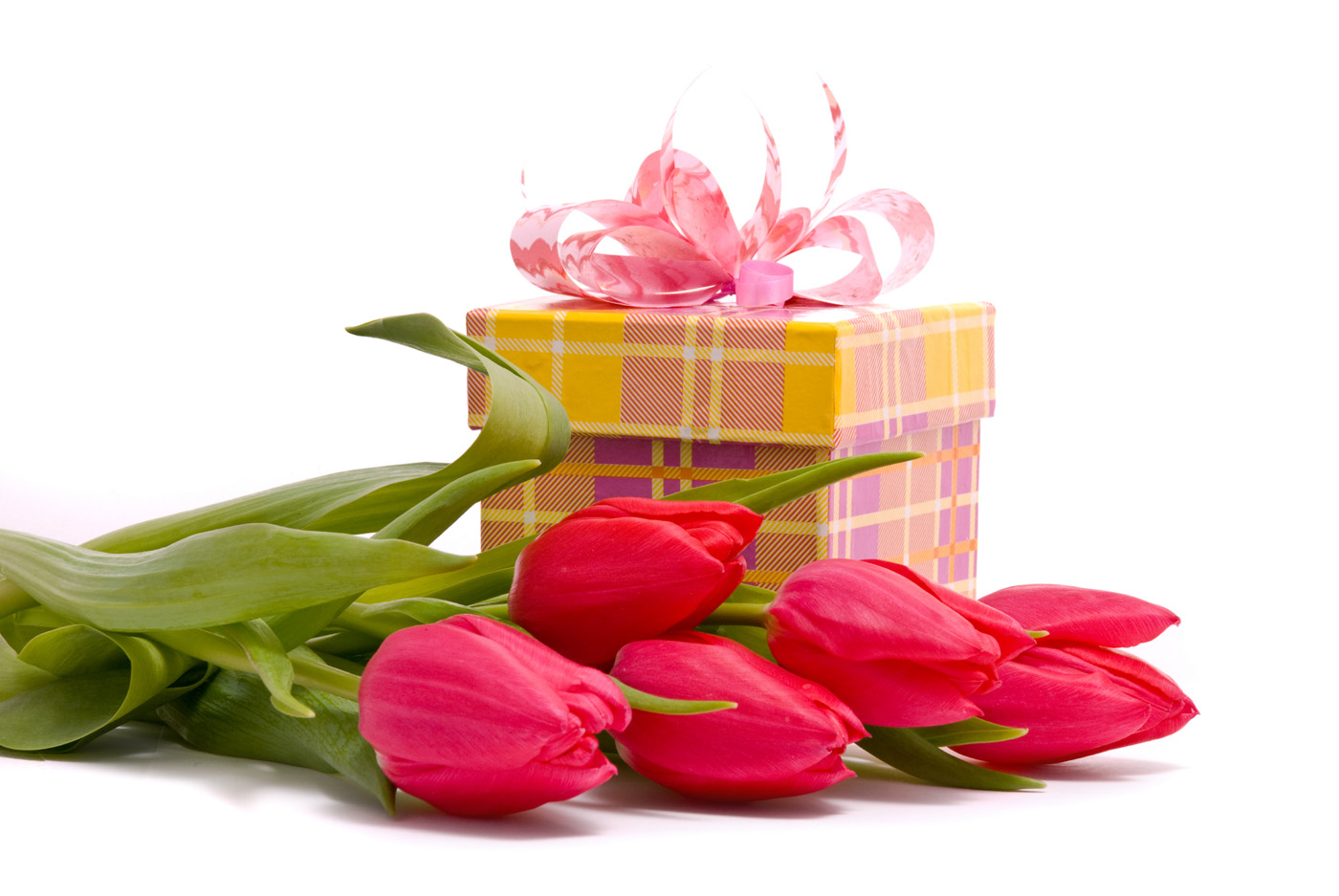Flowers and Gifts 20944 Gift Packaging Others