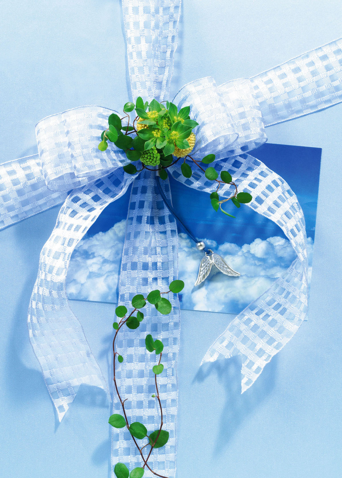 High Definition gift packaging material 558