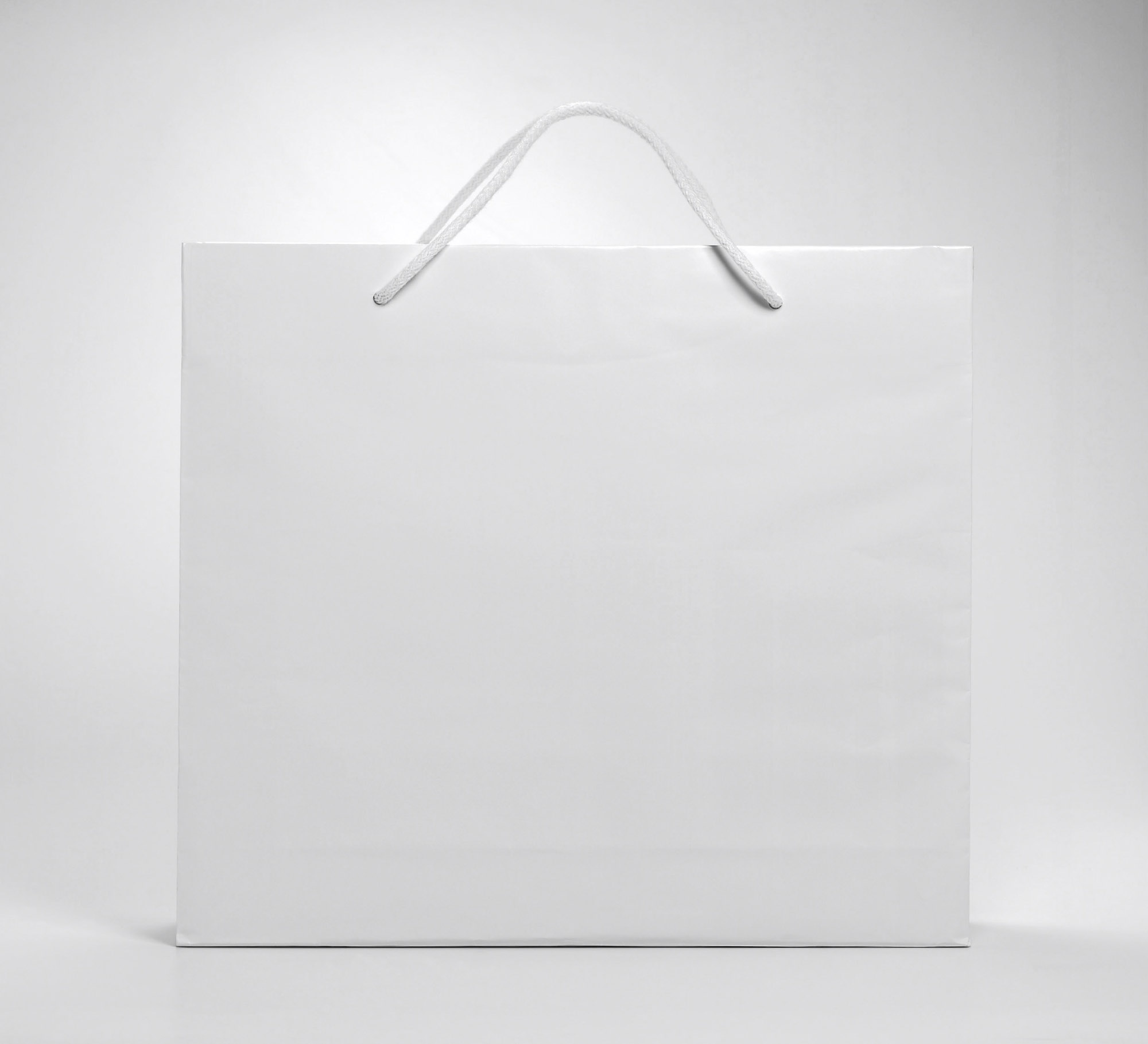 Blank shopping bags 211