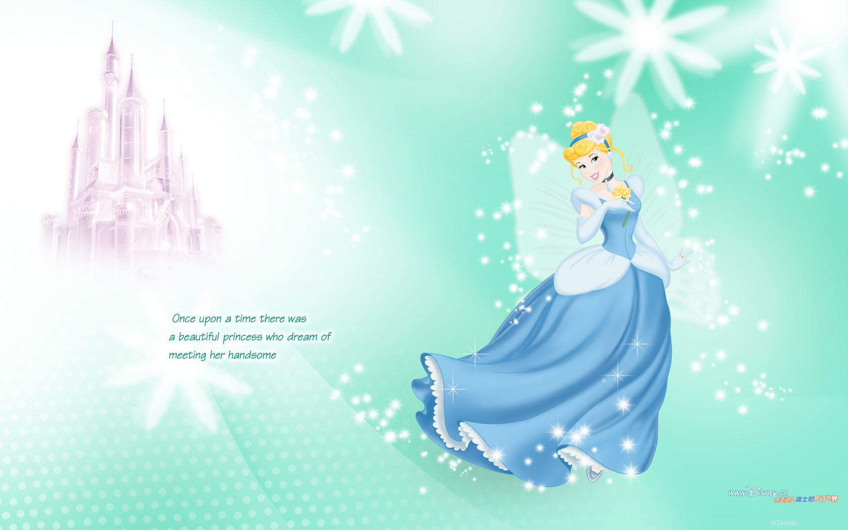 Disney Princess 24487