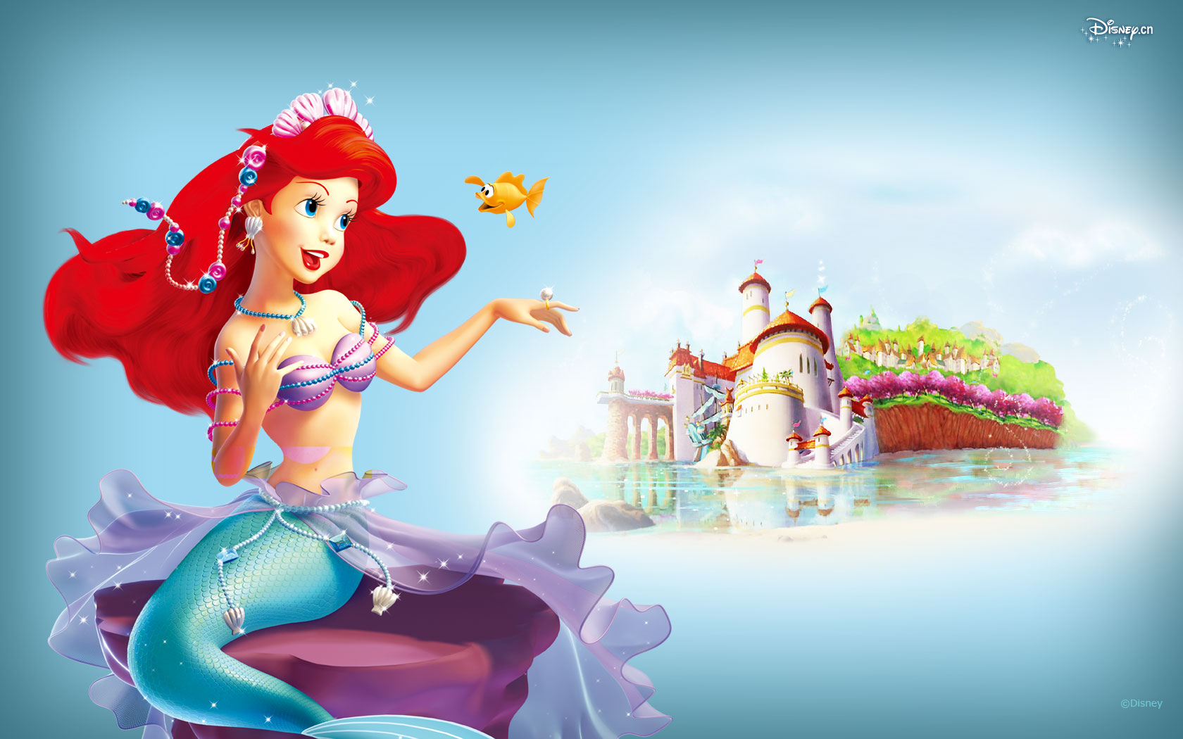 Disney Princess 24693
