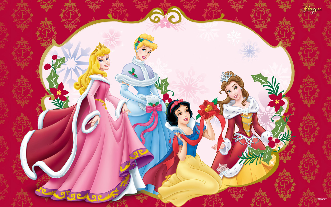 Disney Princess Cartoon Illustration Wallpapers