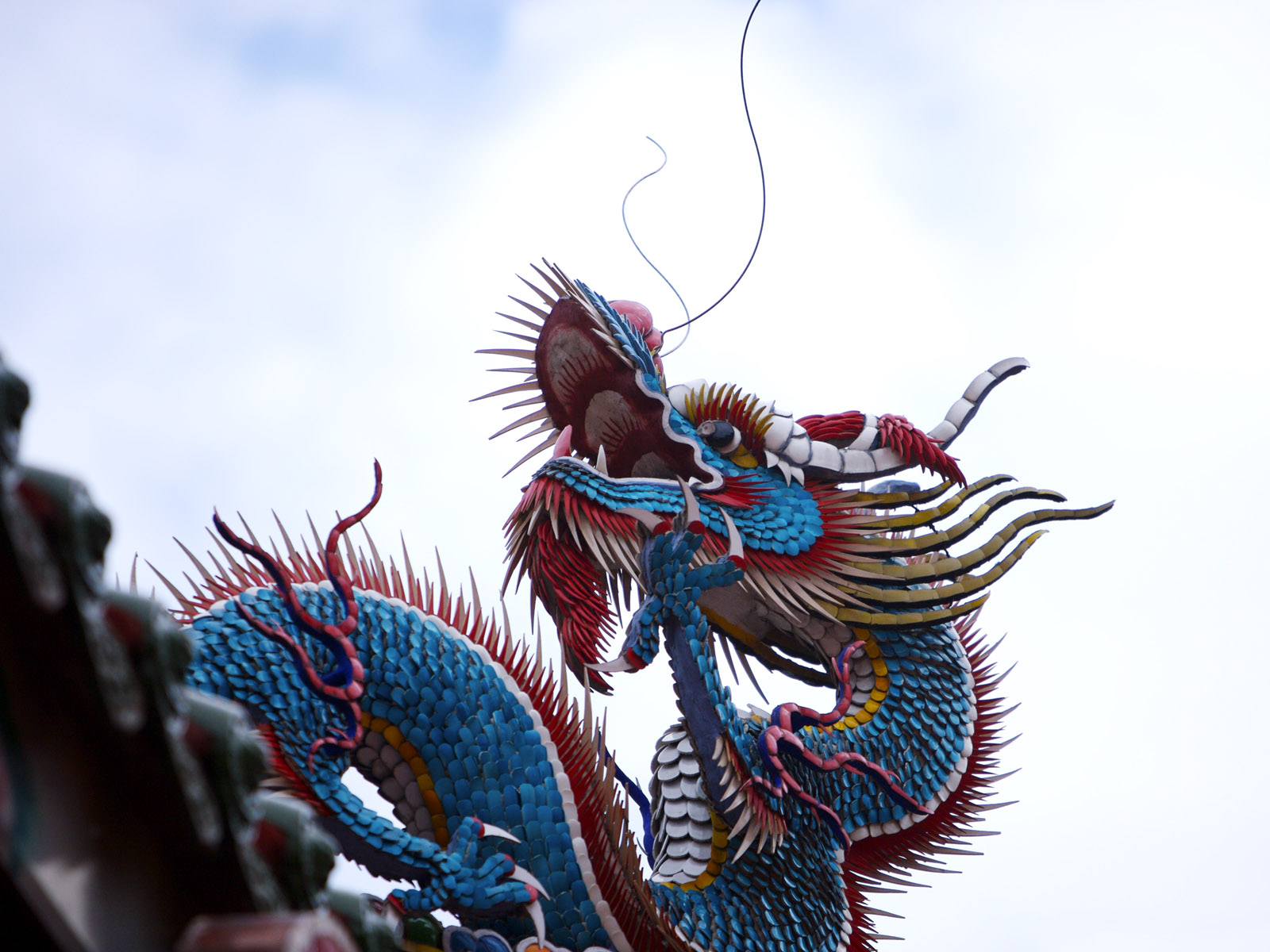 Chinese Culture 3282