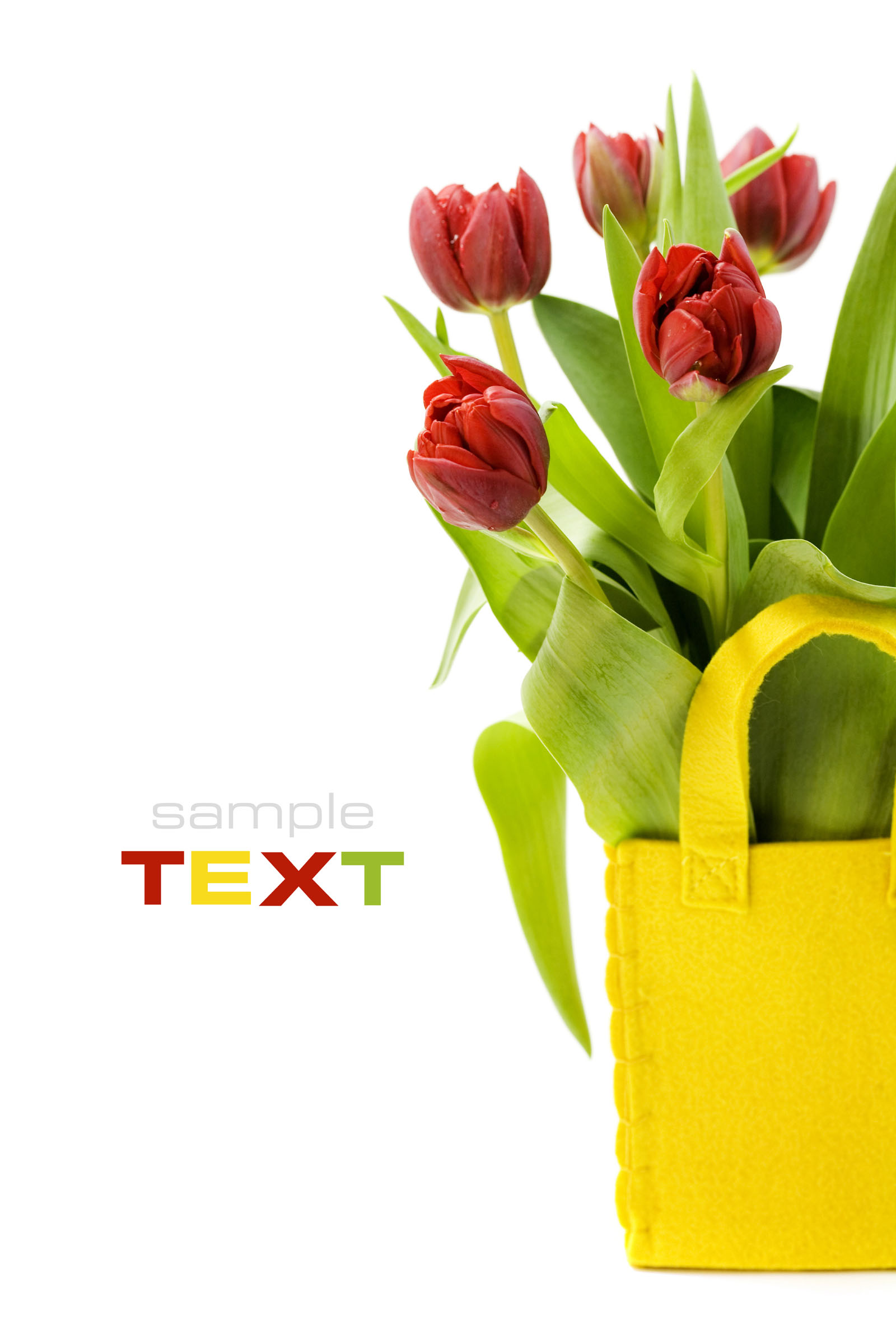 High-definition material tulip 12882