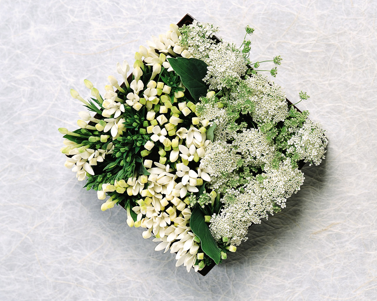 Flower Arrangement 12559