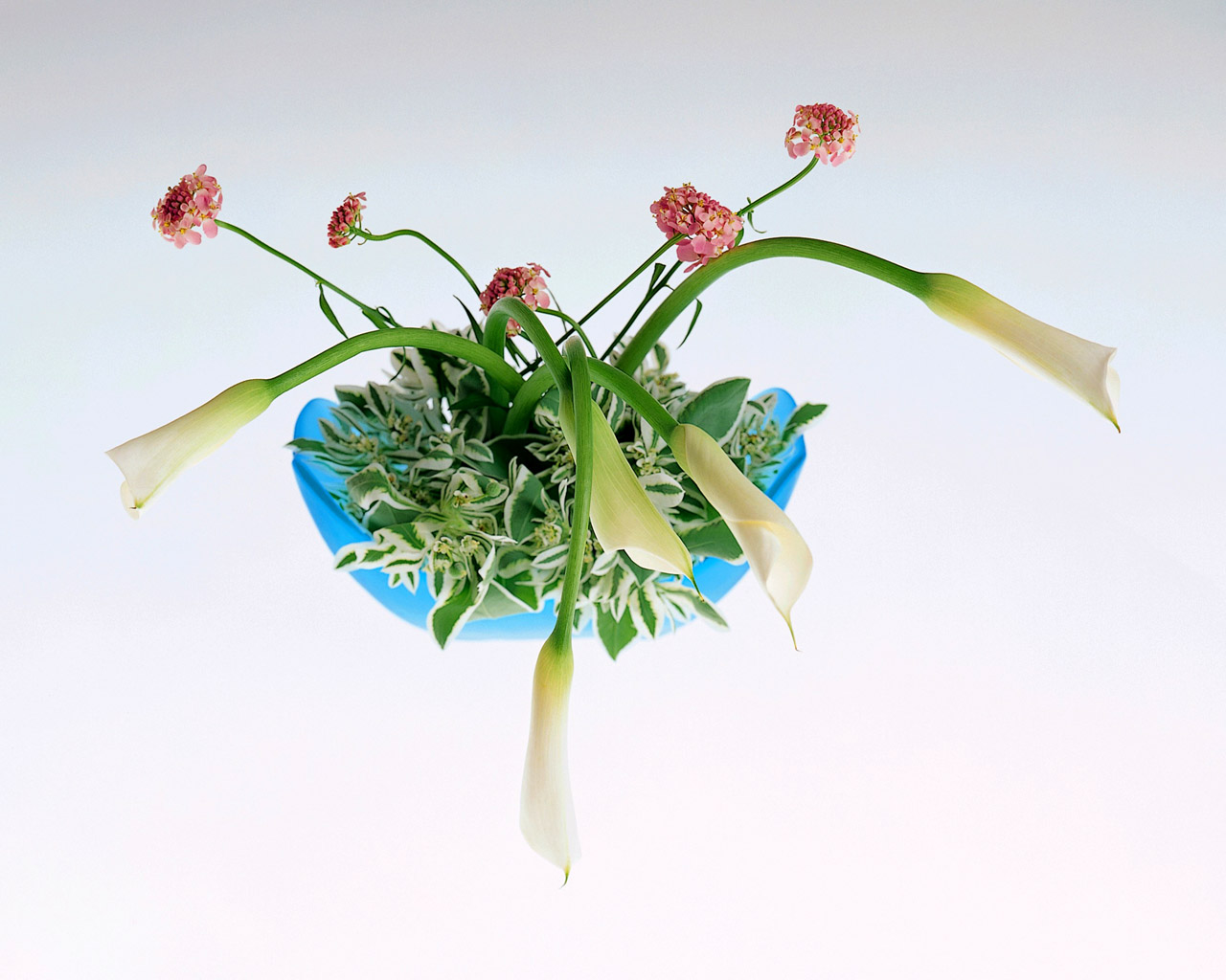 Flower Arrangement 14286