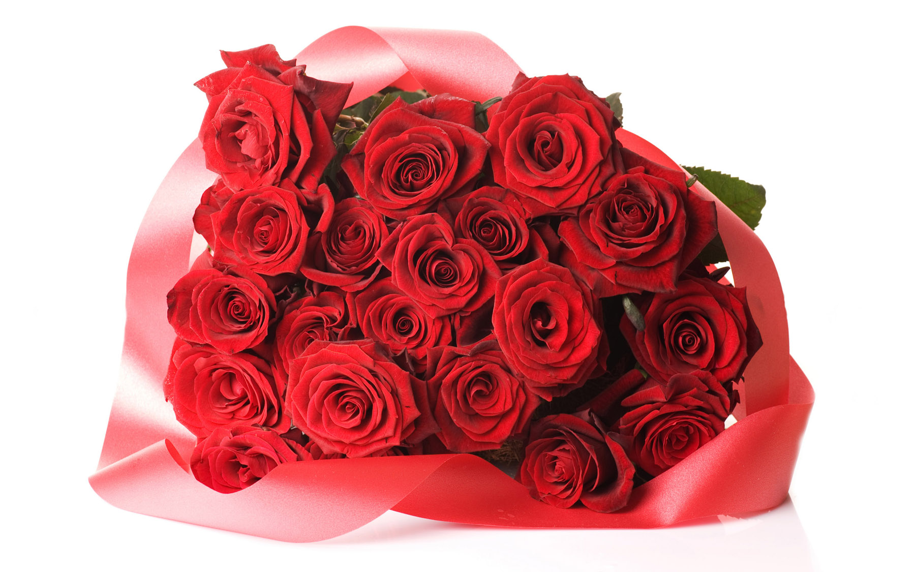 High-resolution photo roses 25410