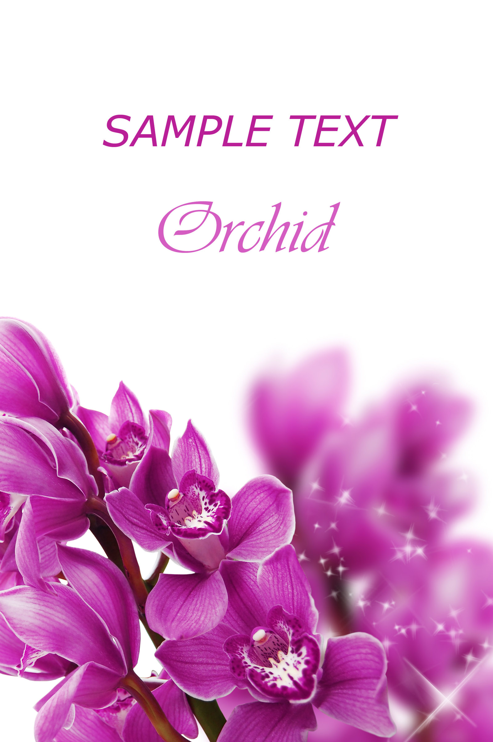 Purple flowers cards 25907
