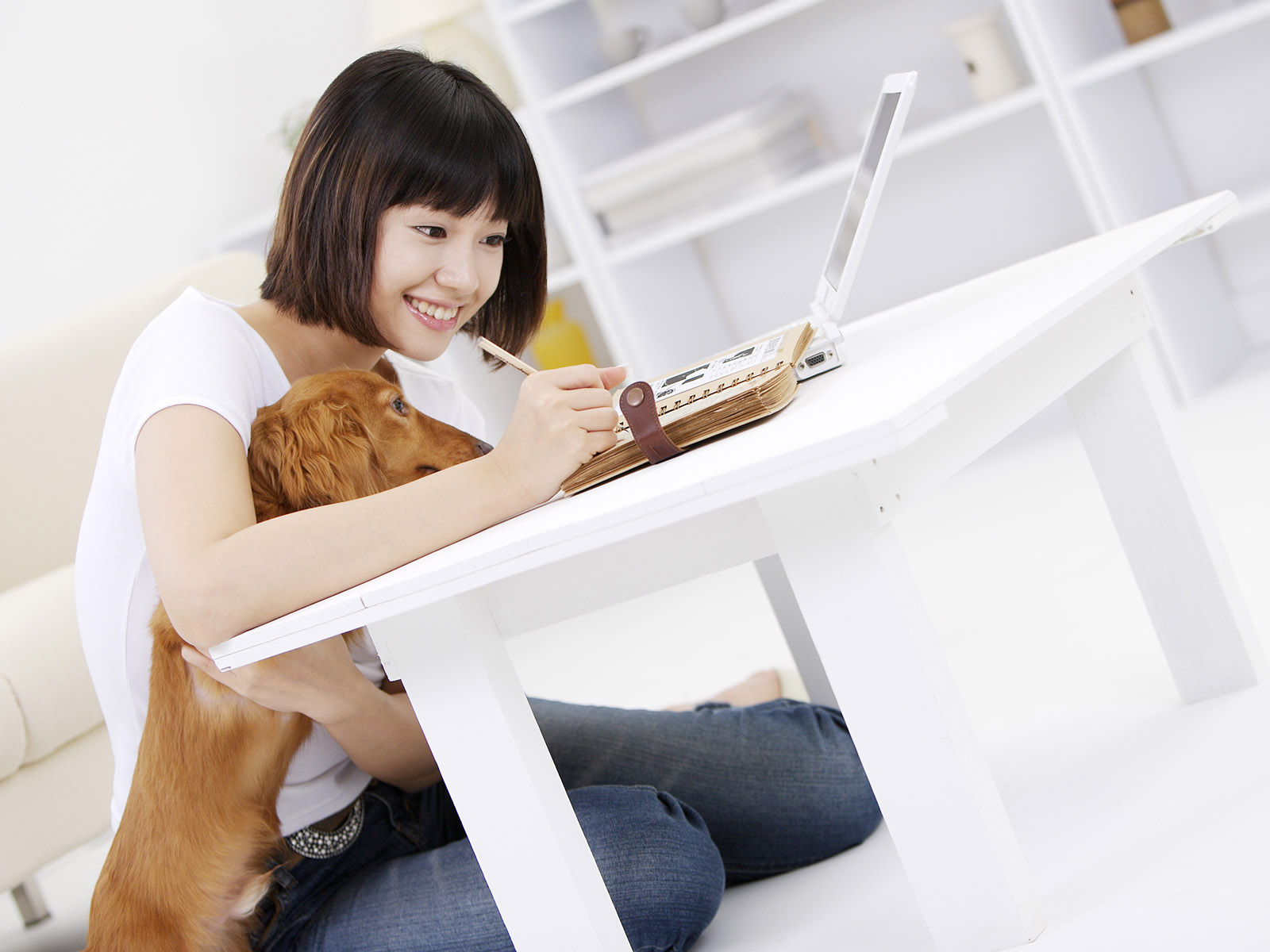 Beauty and the pets 20461