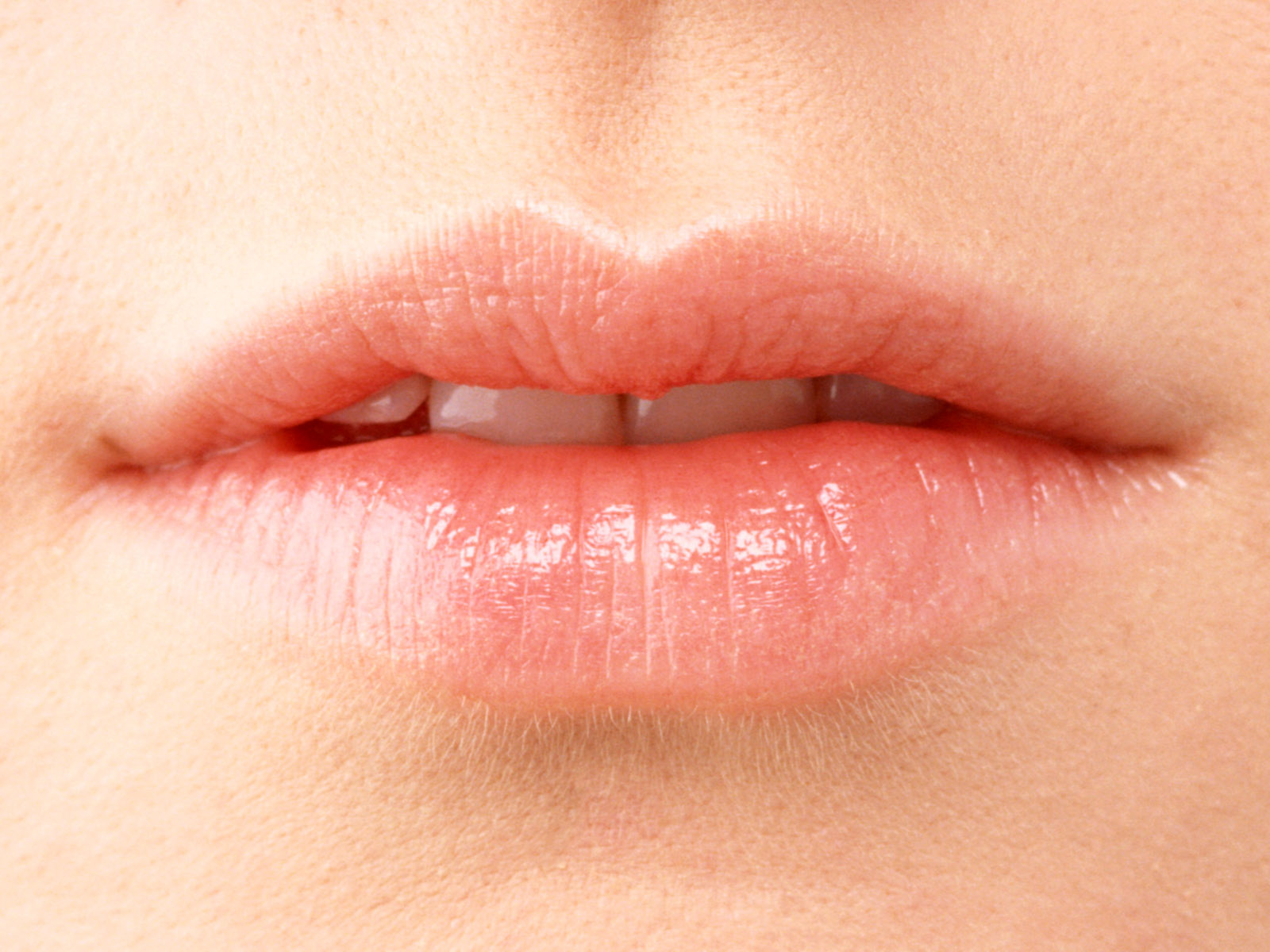 Female lips album 968