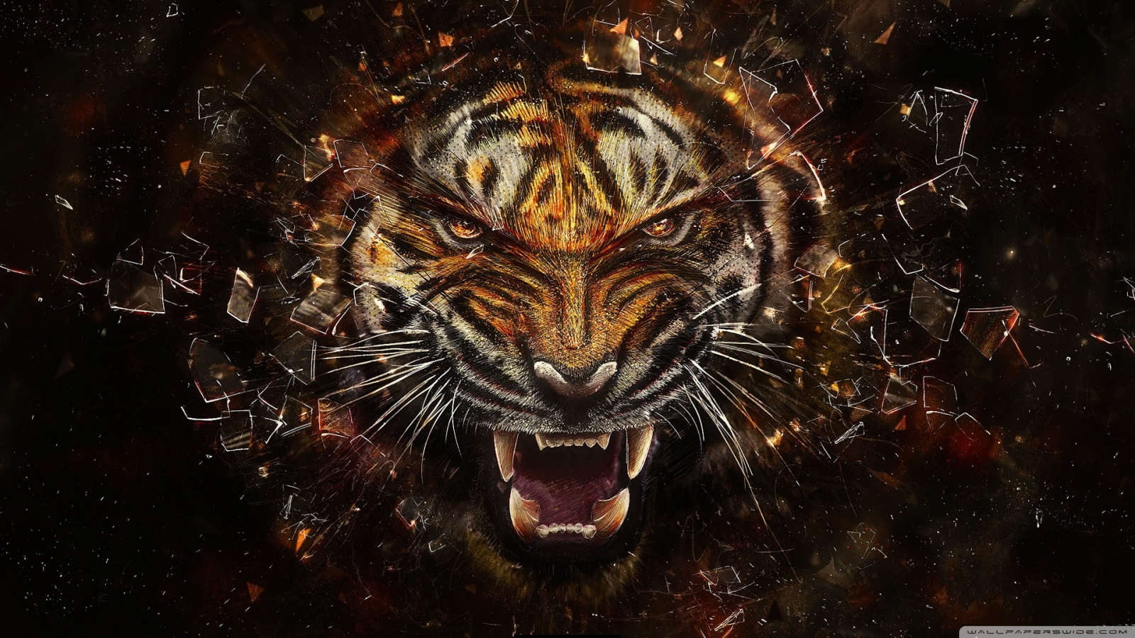 Tiger Background 49575
