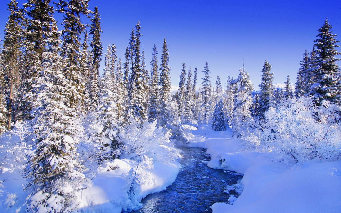 Encyclopedia natural aesthetic Snow wallpaper 49688