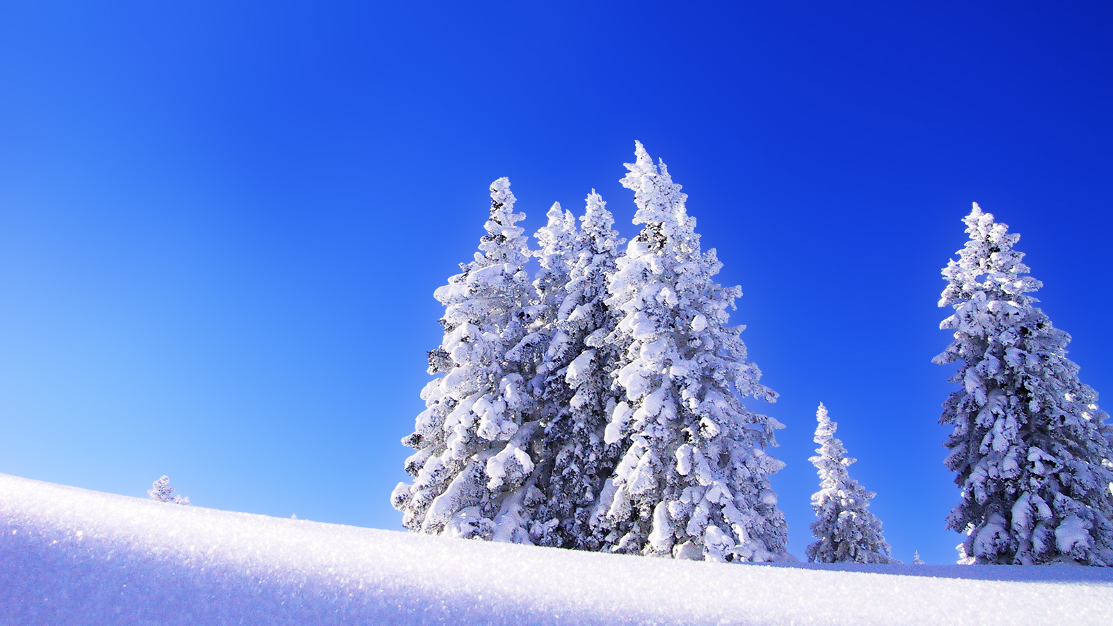 Winter Snow Desktop Wallpaper HD 49801