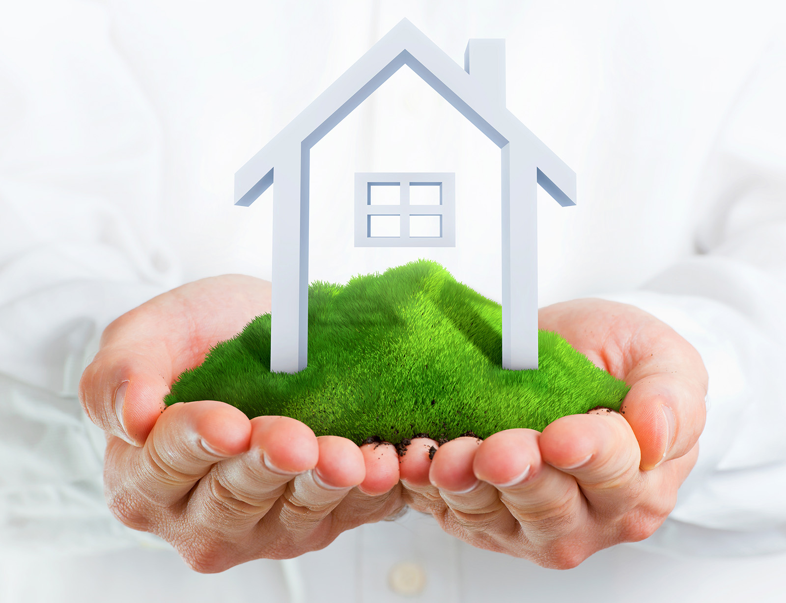 House in my hands and grassland 50043