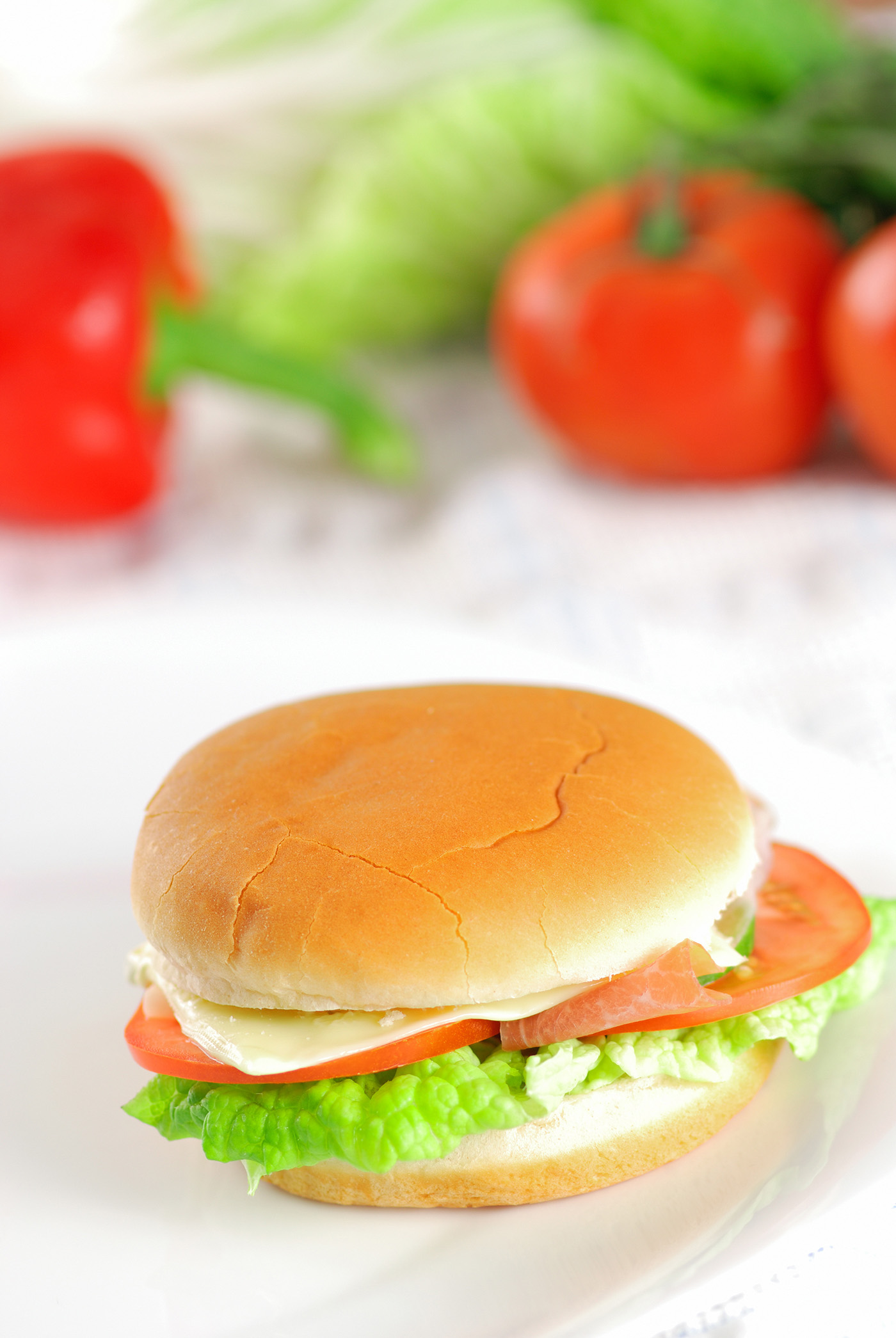 Soft texture of hamburger 50077