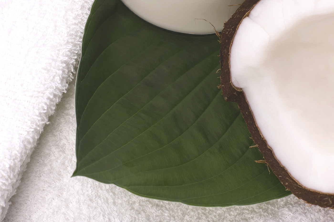 Open coconut shell 50159