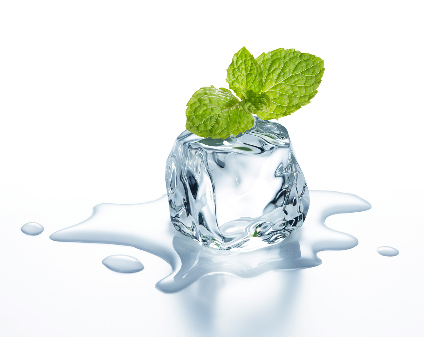 Melting ice and mint leaves 50212