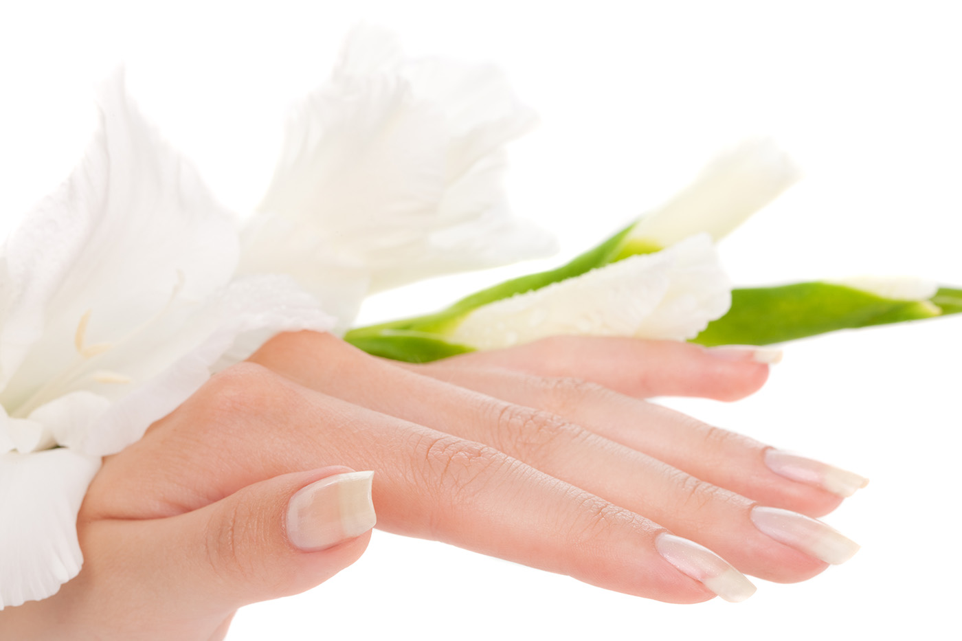 Hands with white flowers 50442