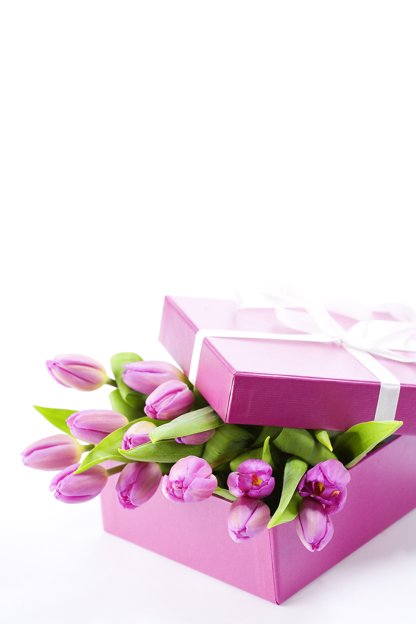 Tulips in gift box 50454