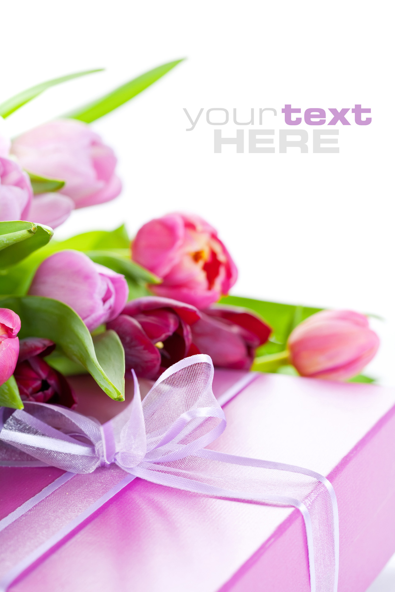 Gift boxes with tulips 50528