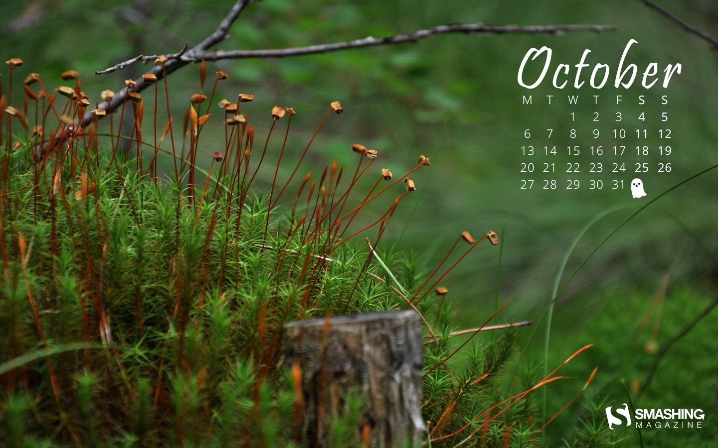 In January Calendar Wallpaper 50991