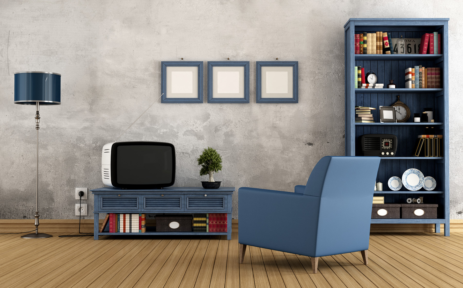 Display racks in the room with the TV 51496