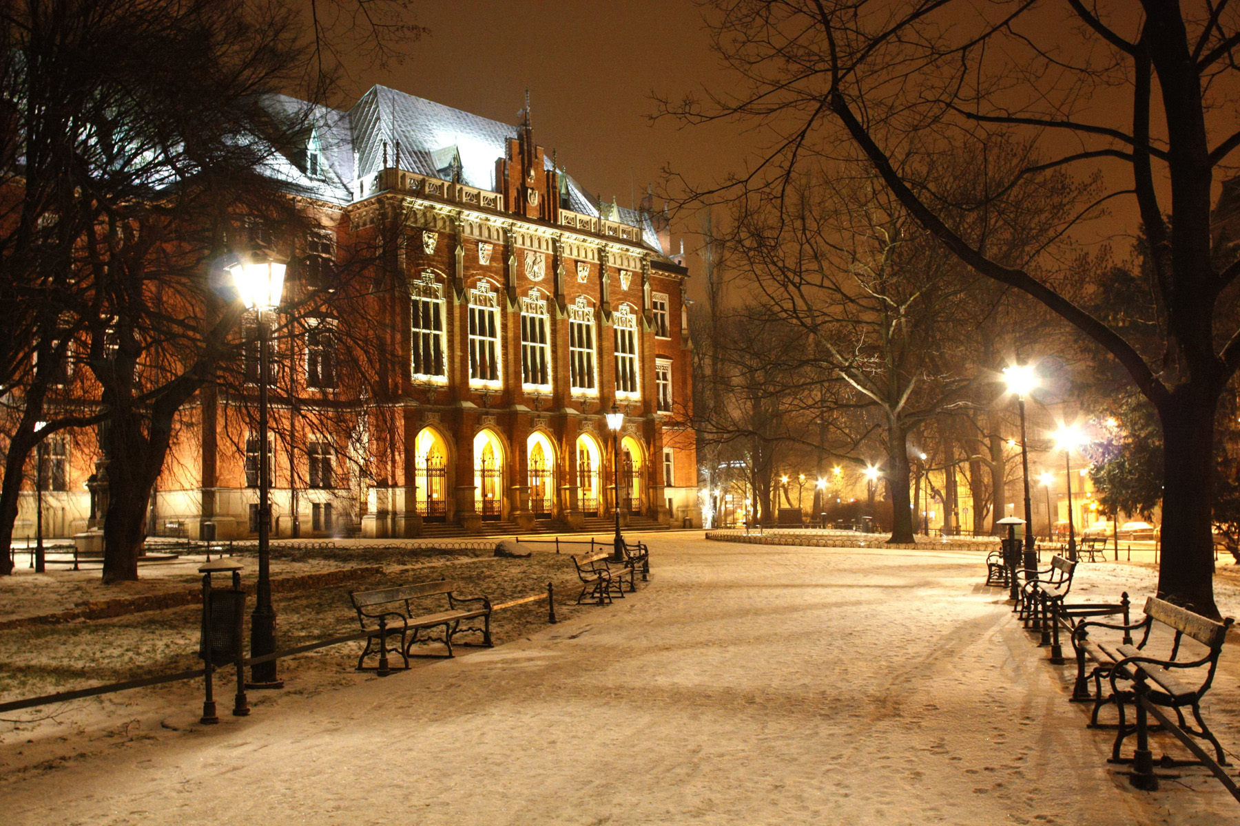 European-style buildings and street trees 51504