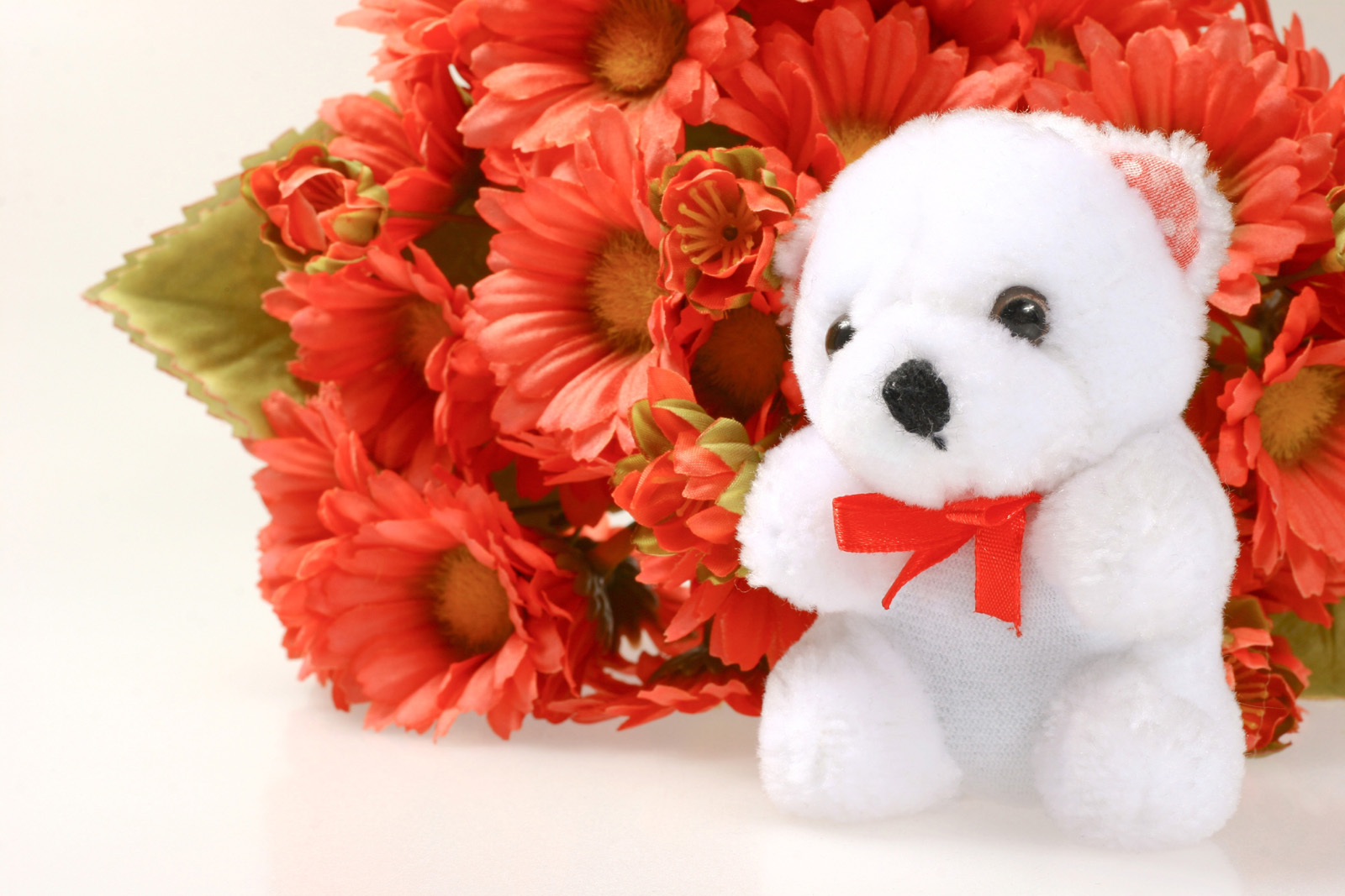Cute white teddy bear 51543