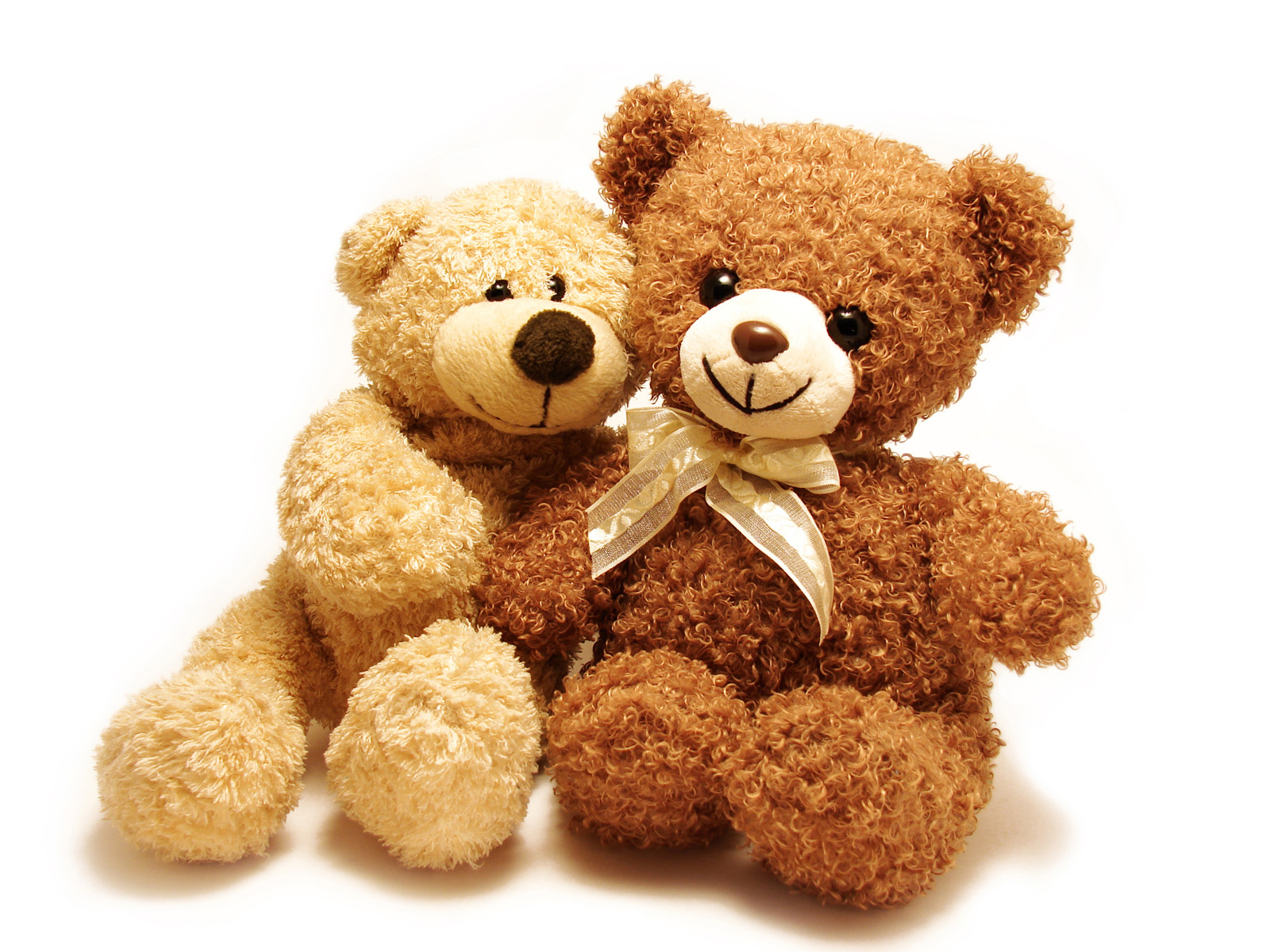 Snuggled cute toy bear 51555