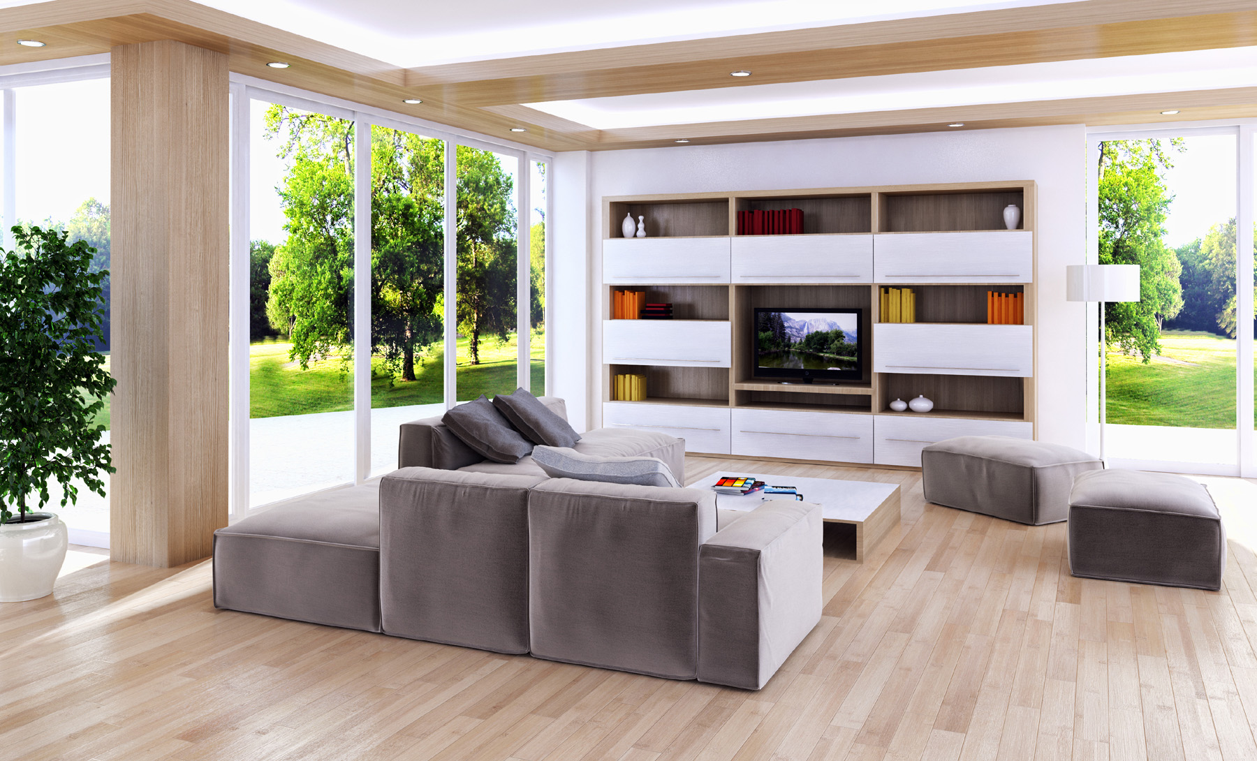 Living room TV and sofas furniture 51753