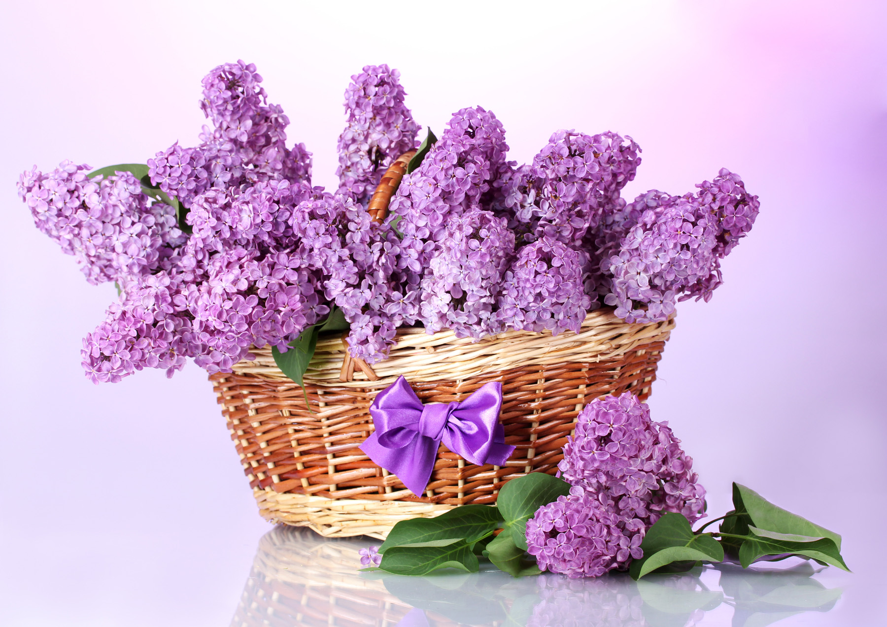 Fills the baskets of purple lilac 51850