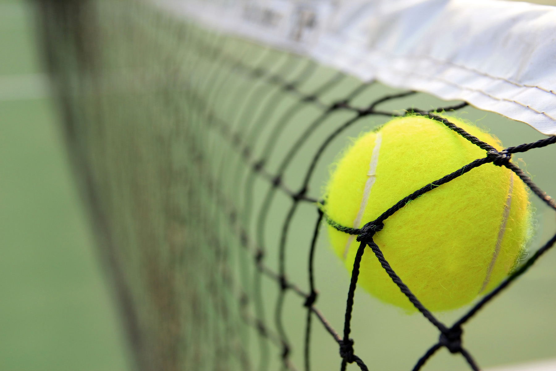 Hit the net on a tennis 51938