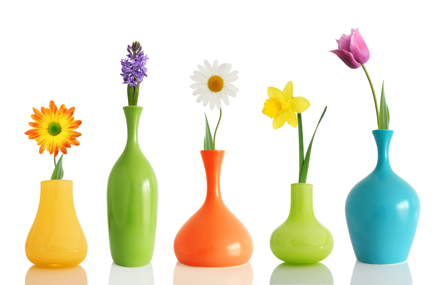 Different colors of flower arrangement with vase 52009