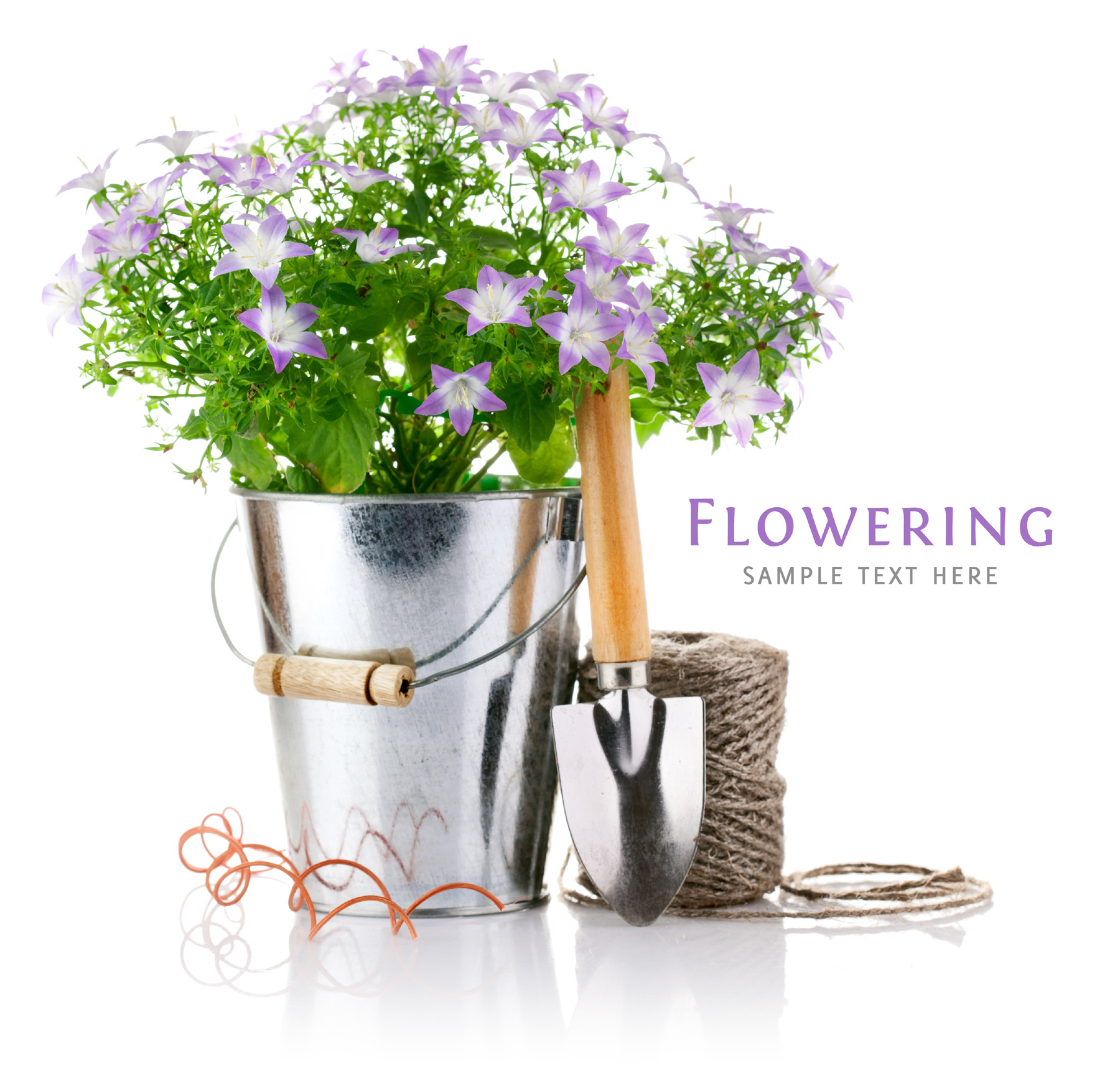 Plants and gardening tools 52018