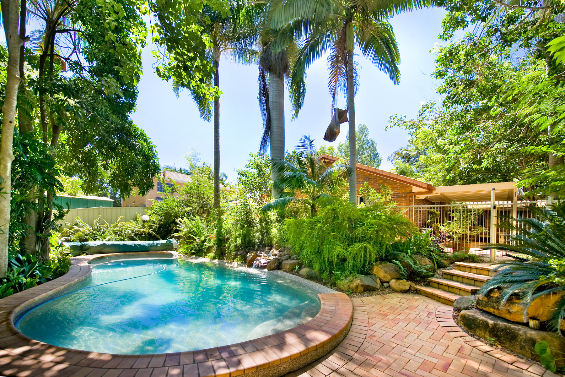 Tropical trees and hot springs pool landscapes 52318
