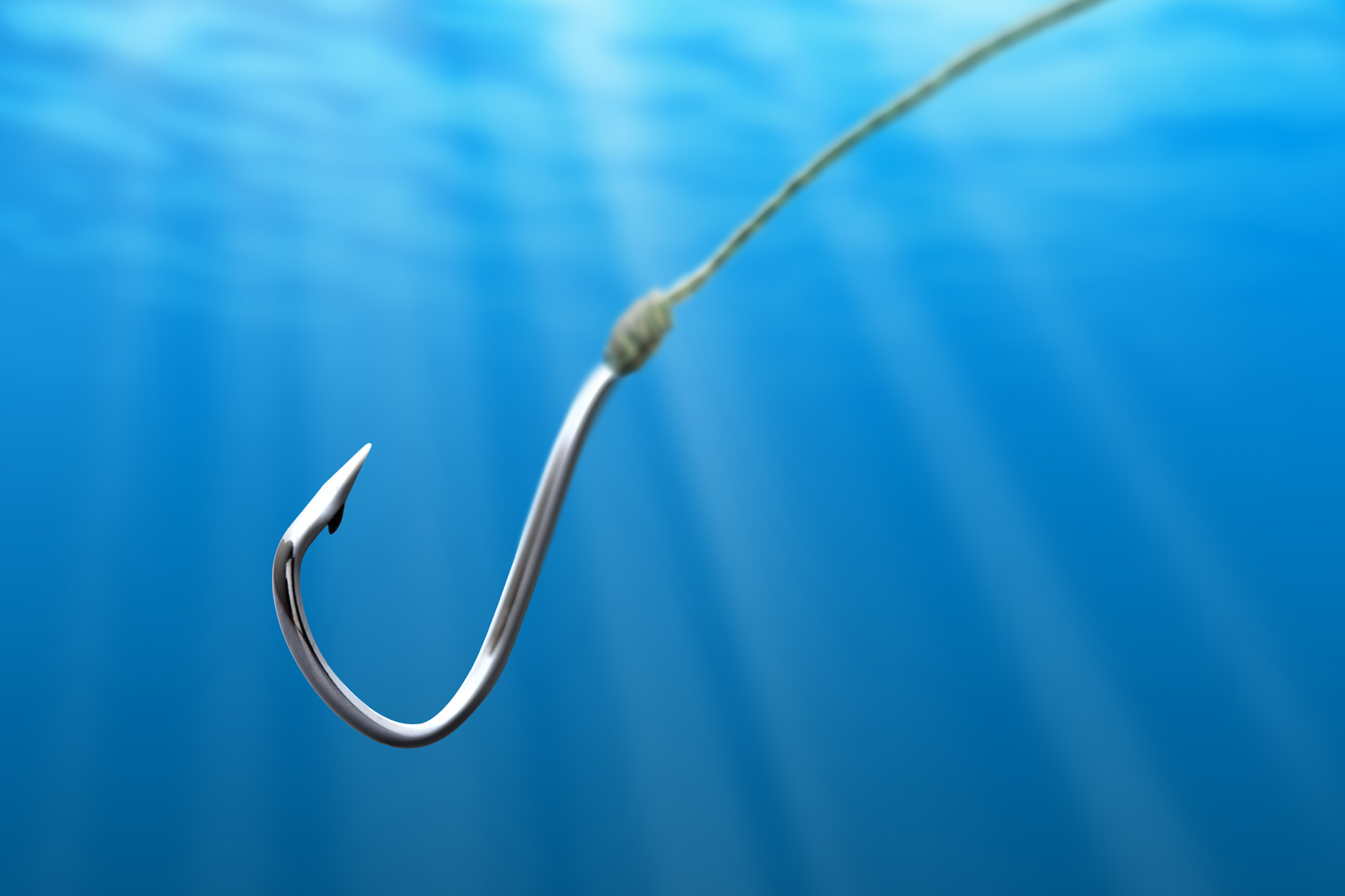 Into into the water of the stainless steel hooks 52560