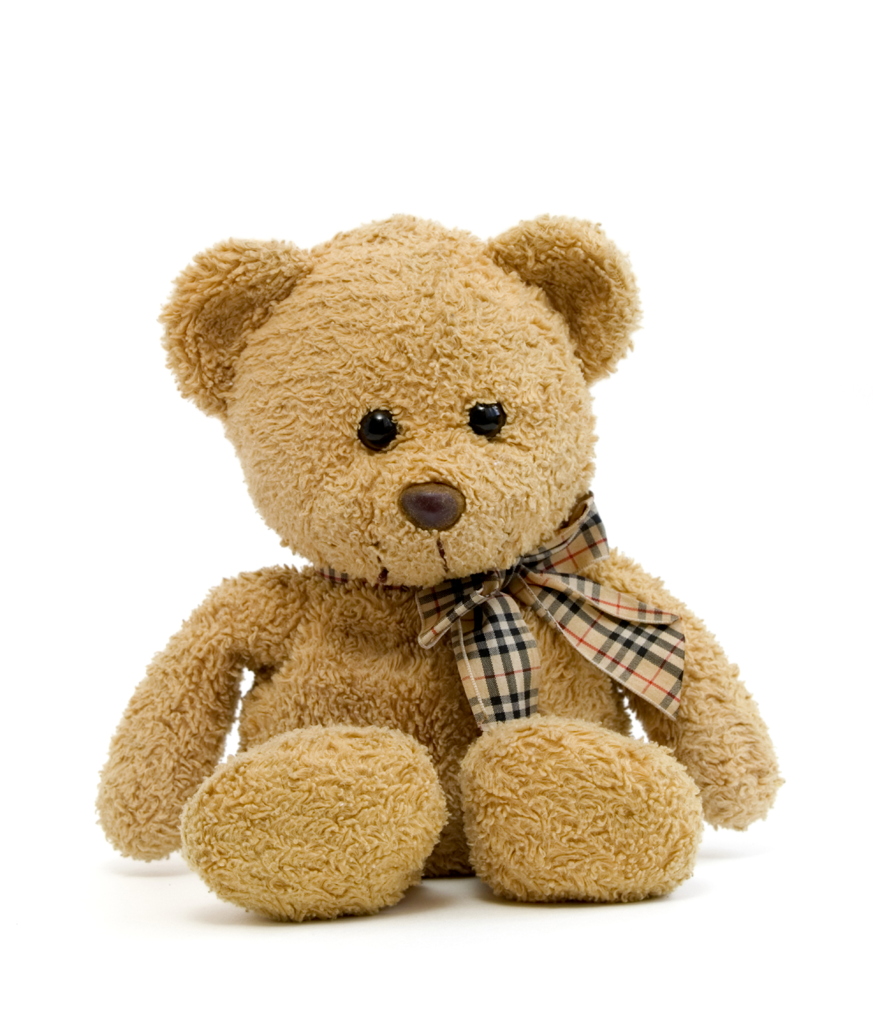 Teddy bear 52577