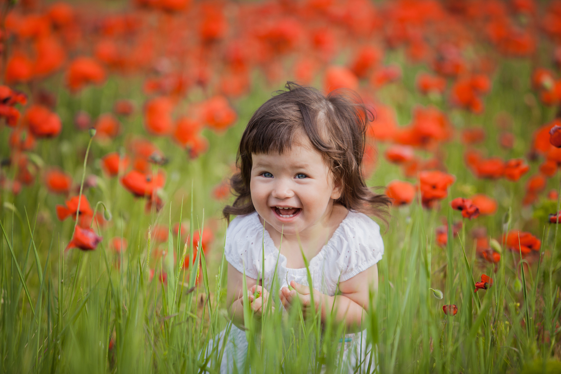 The little girl stood in the flower of the grass 52612