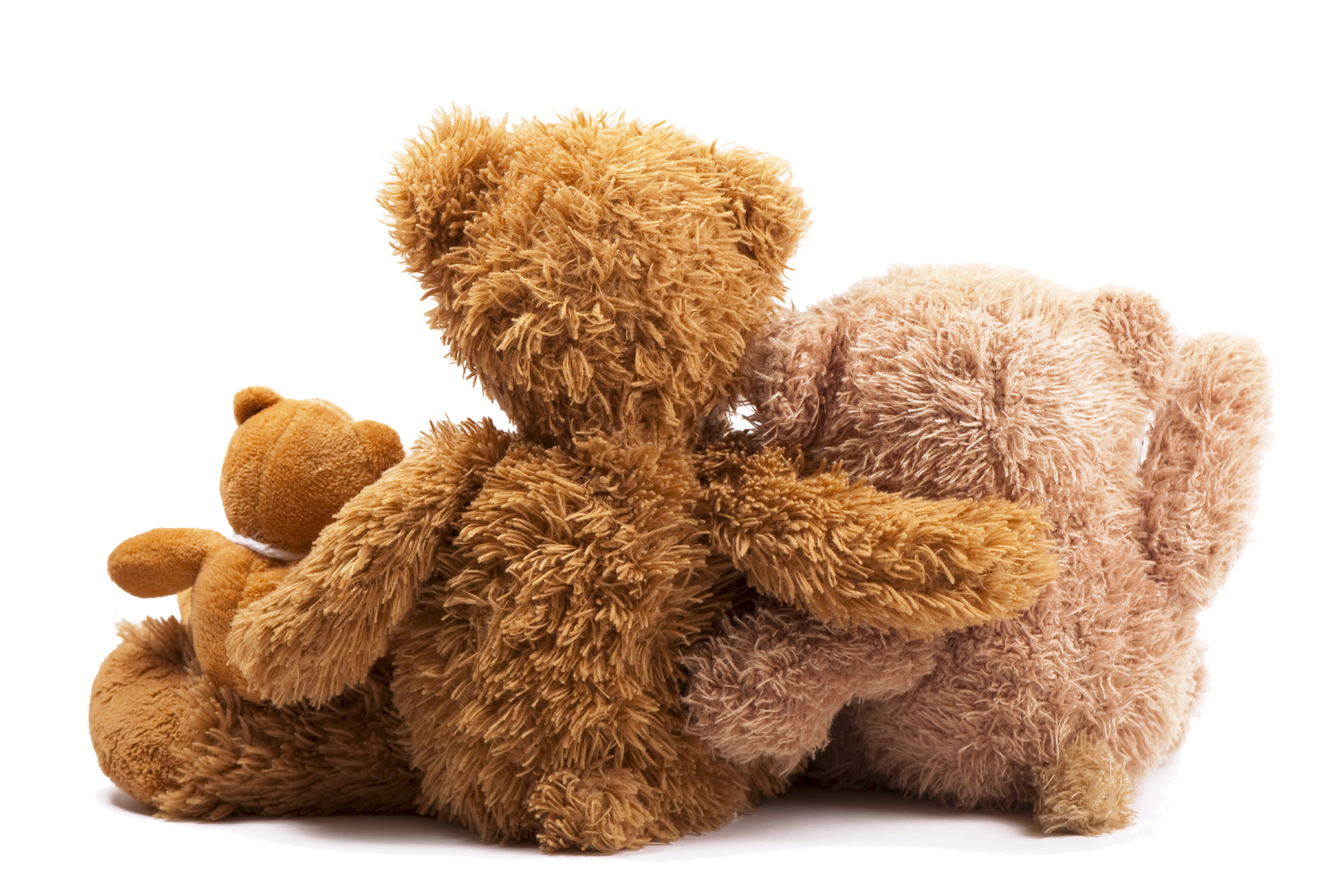 Of closely rely on Cute Teddy bear 52624