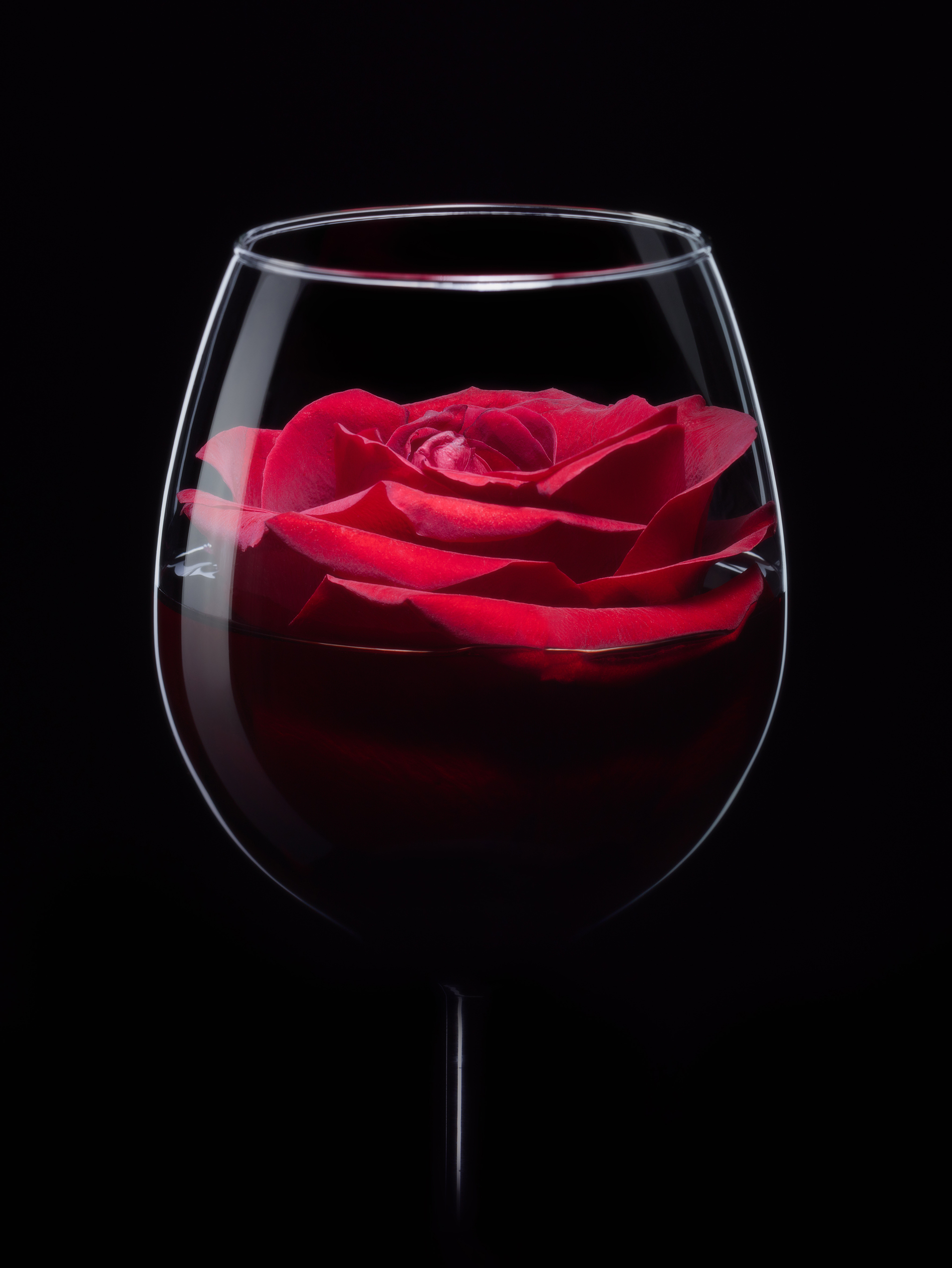Glass of Red Roses flowers 52653