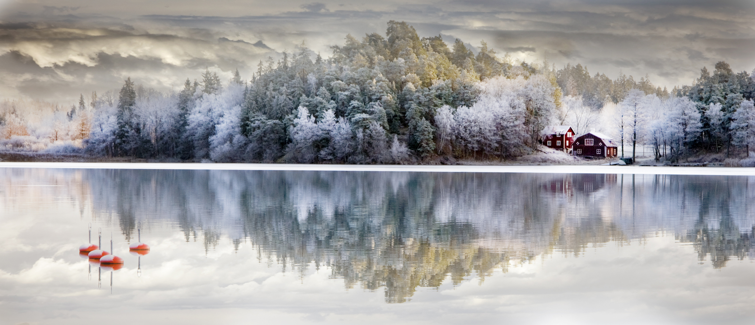 Calm Lake and trees covered with rime 52711
