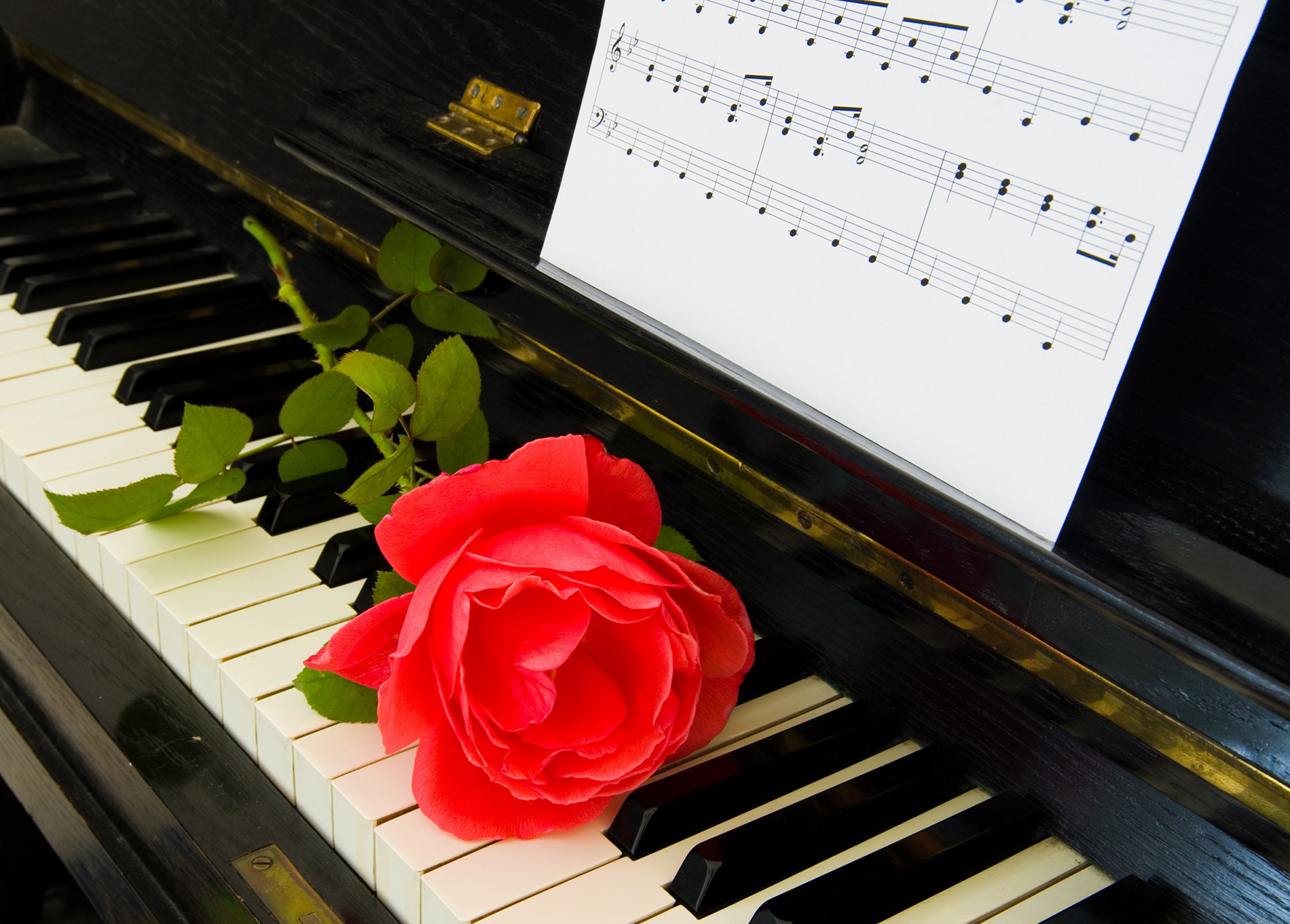 Music on the piano and a red rose 52814