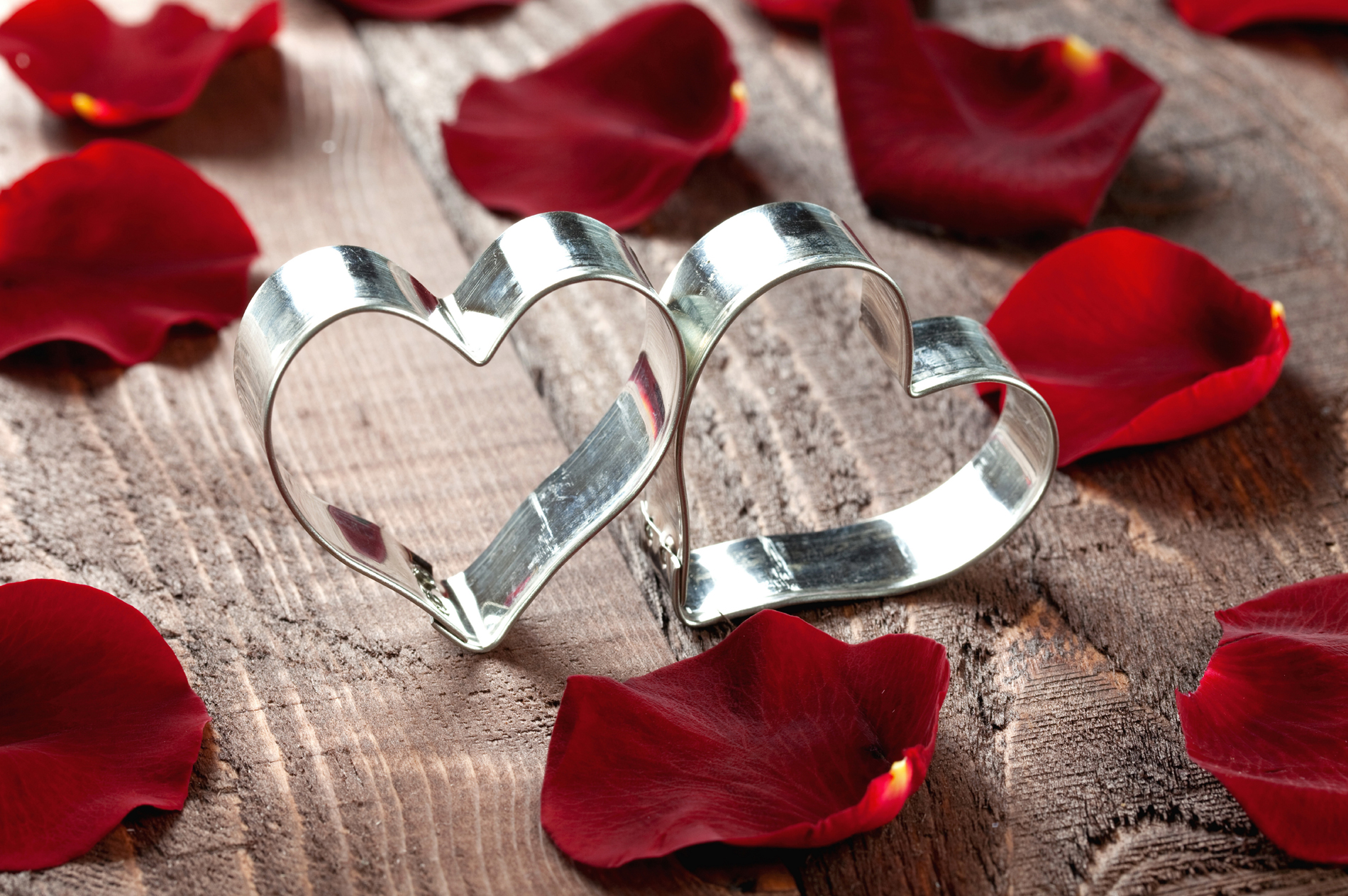 Rose petals with silver hearts 52854