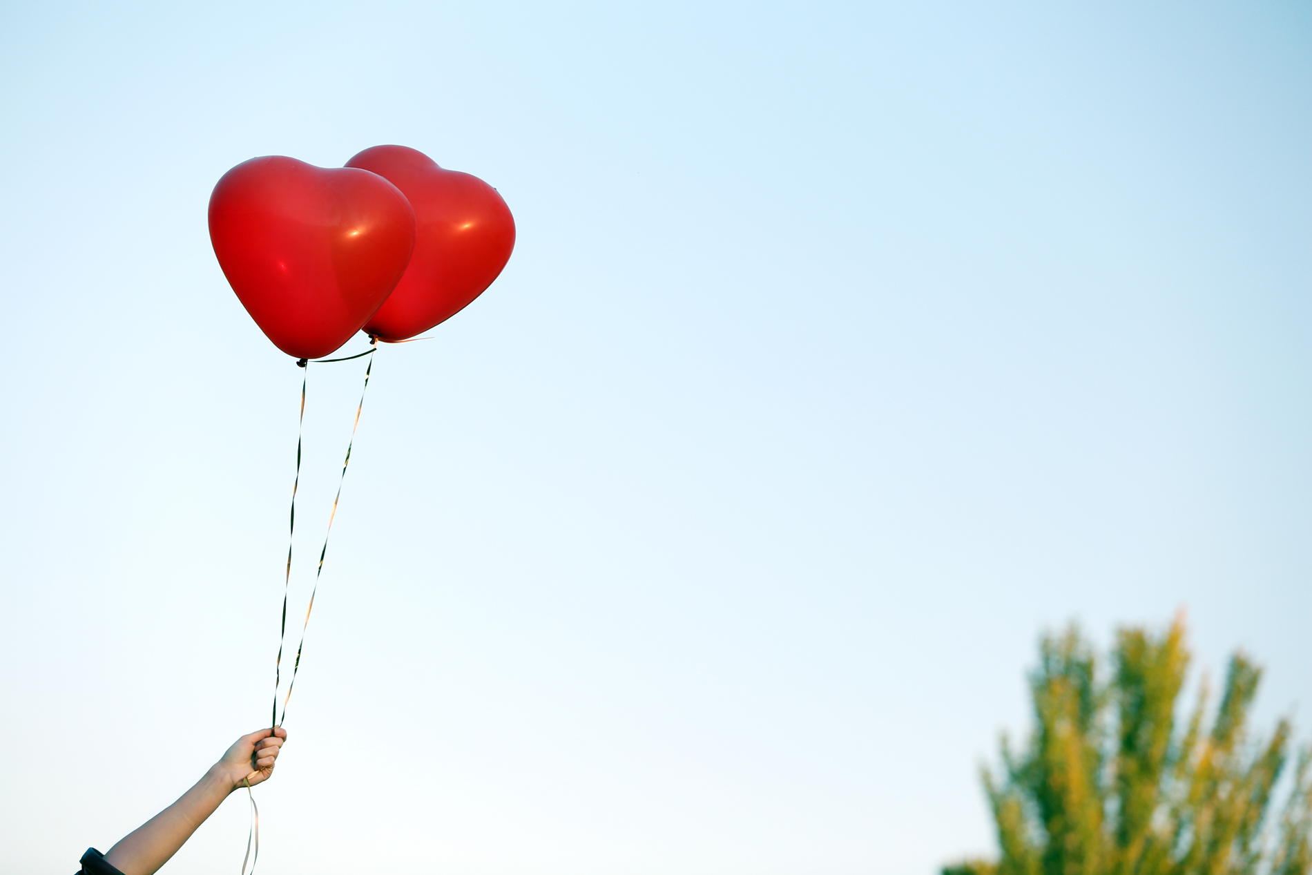 In the hands of the red heart-shaped balloons 52876