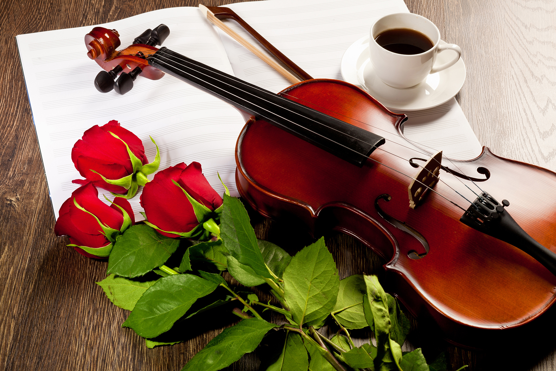 Violin with red roses flowers 52902