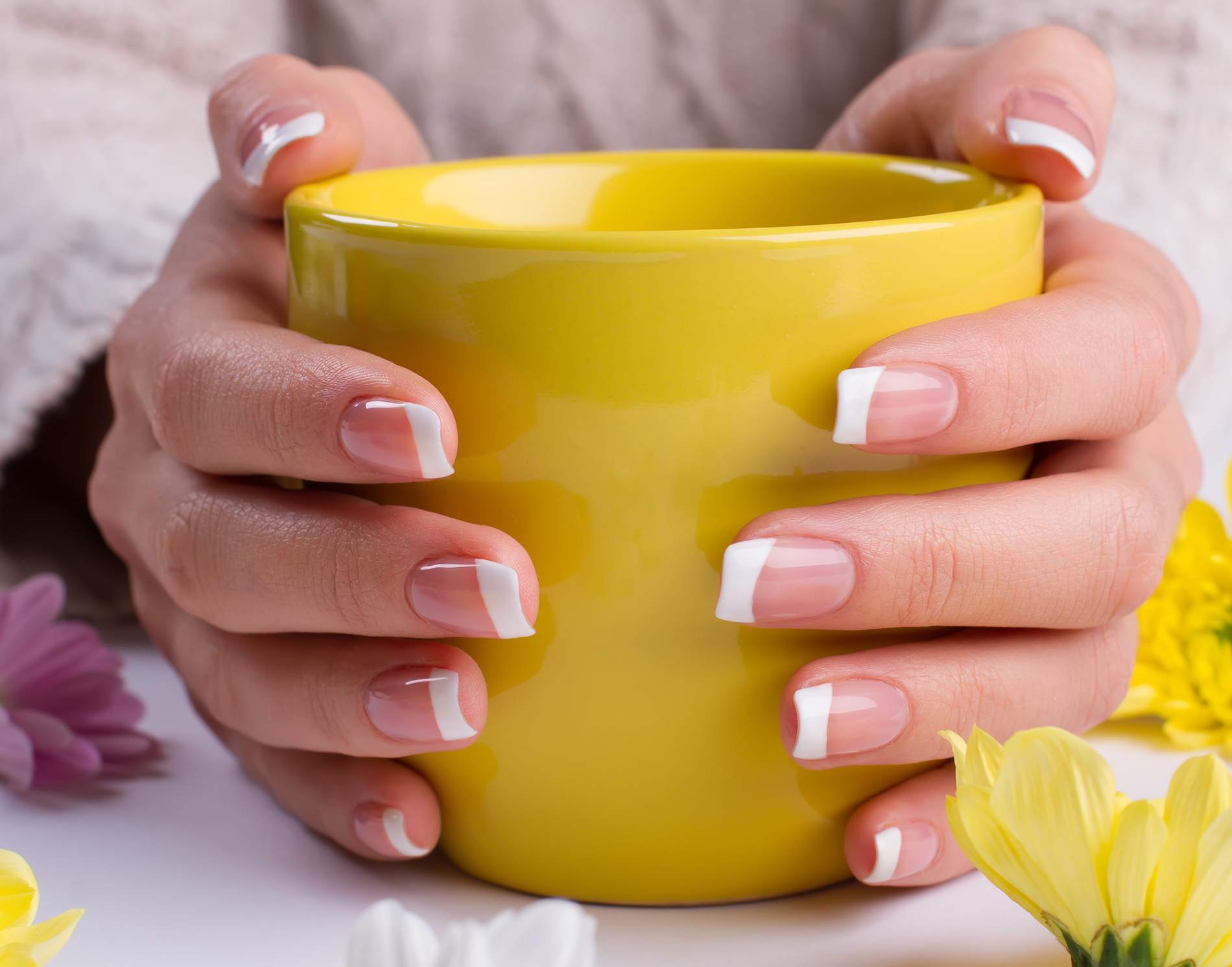 Hands holding Cup 52936