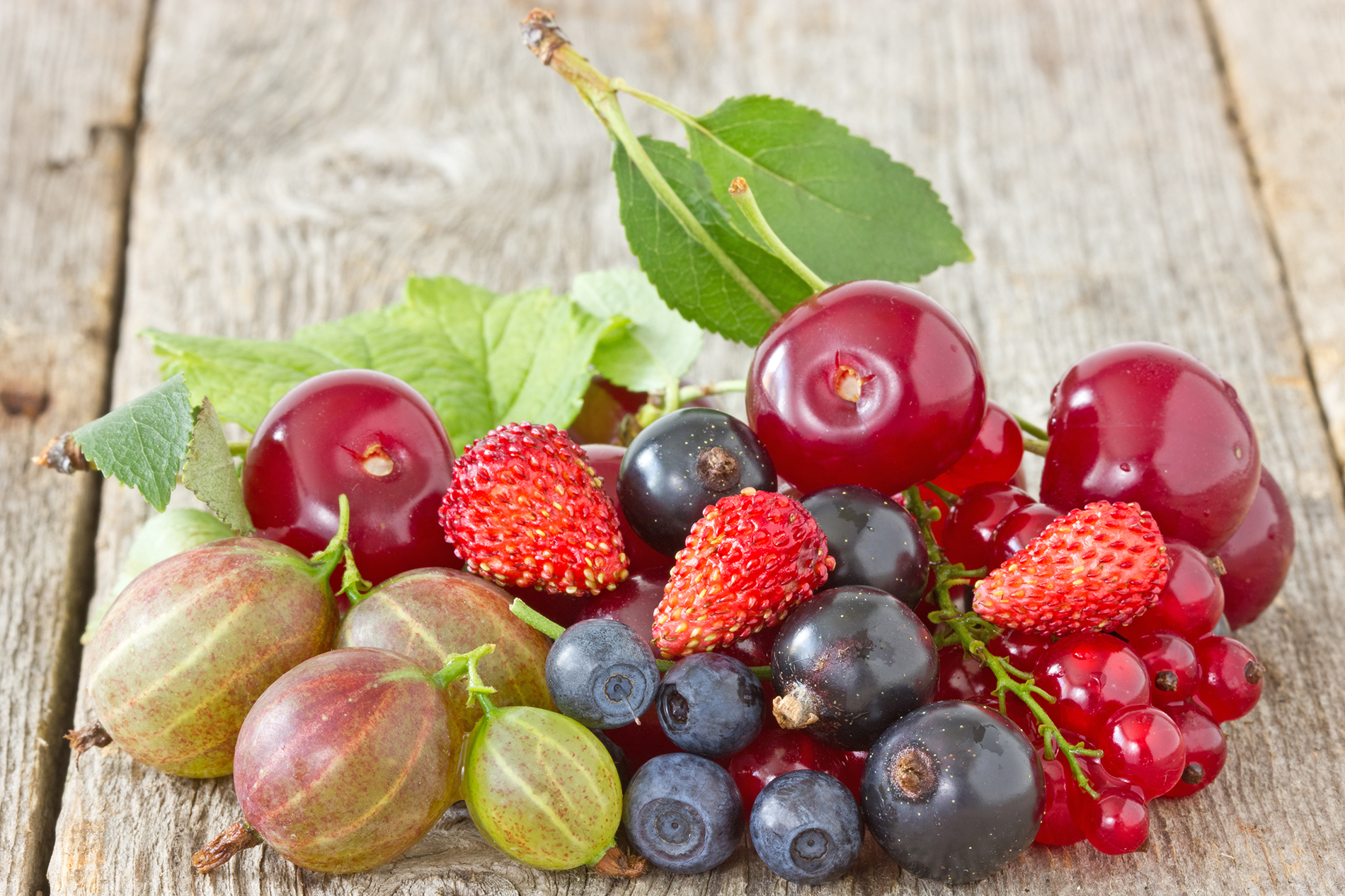 Fruits such as blueberries, strawberries and currants 53044